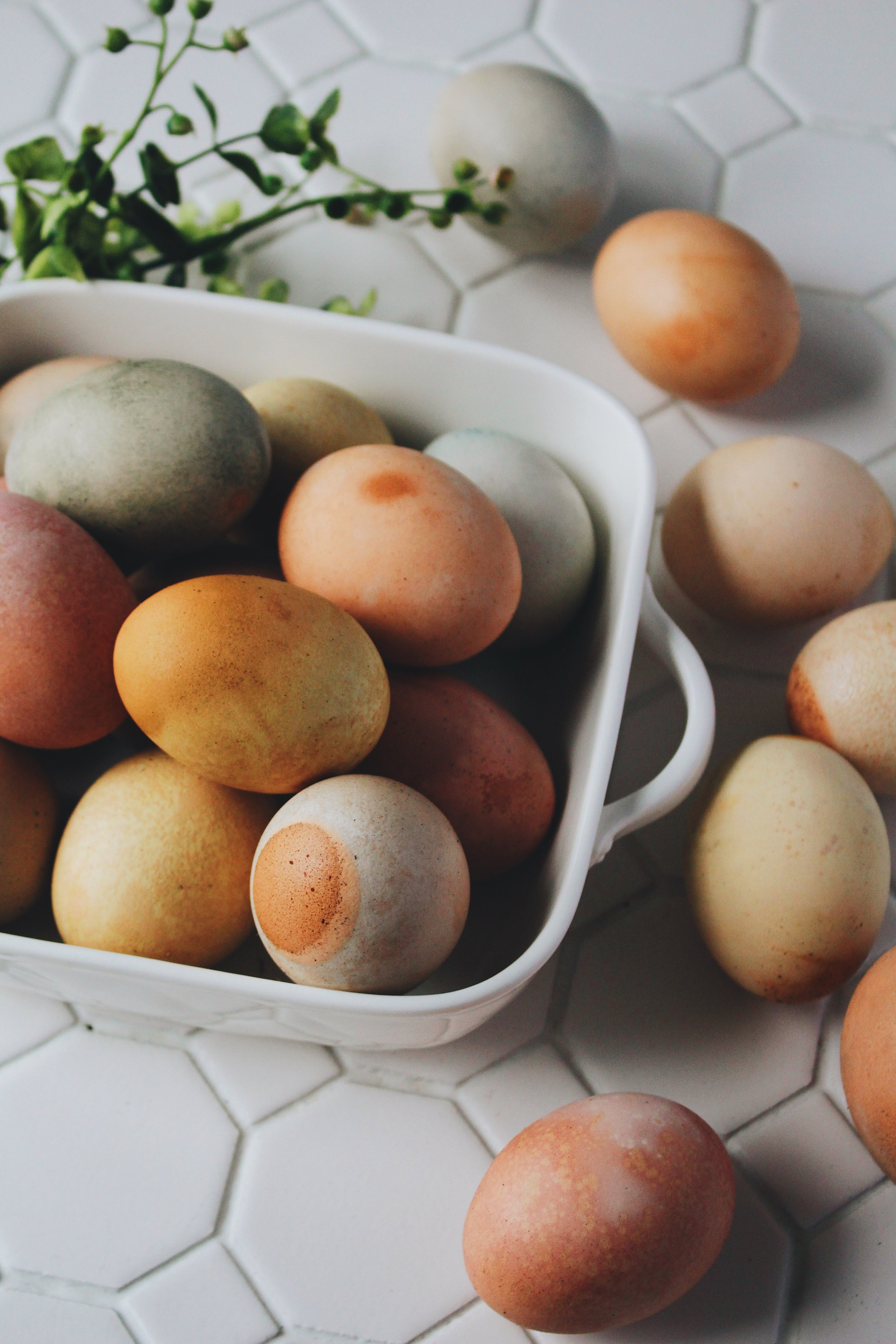 Herb Dyed Easter eggs