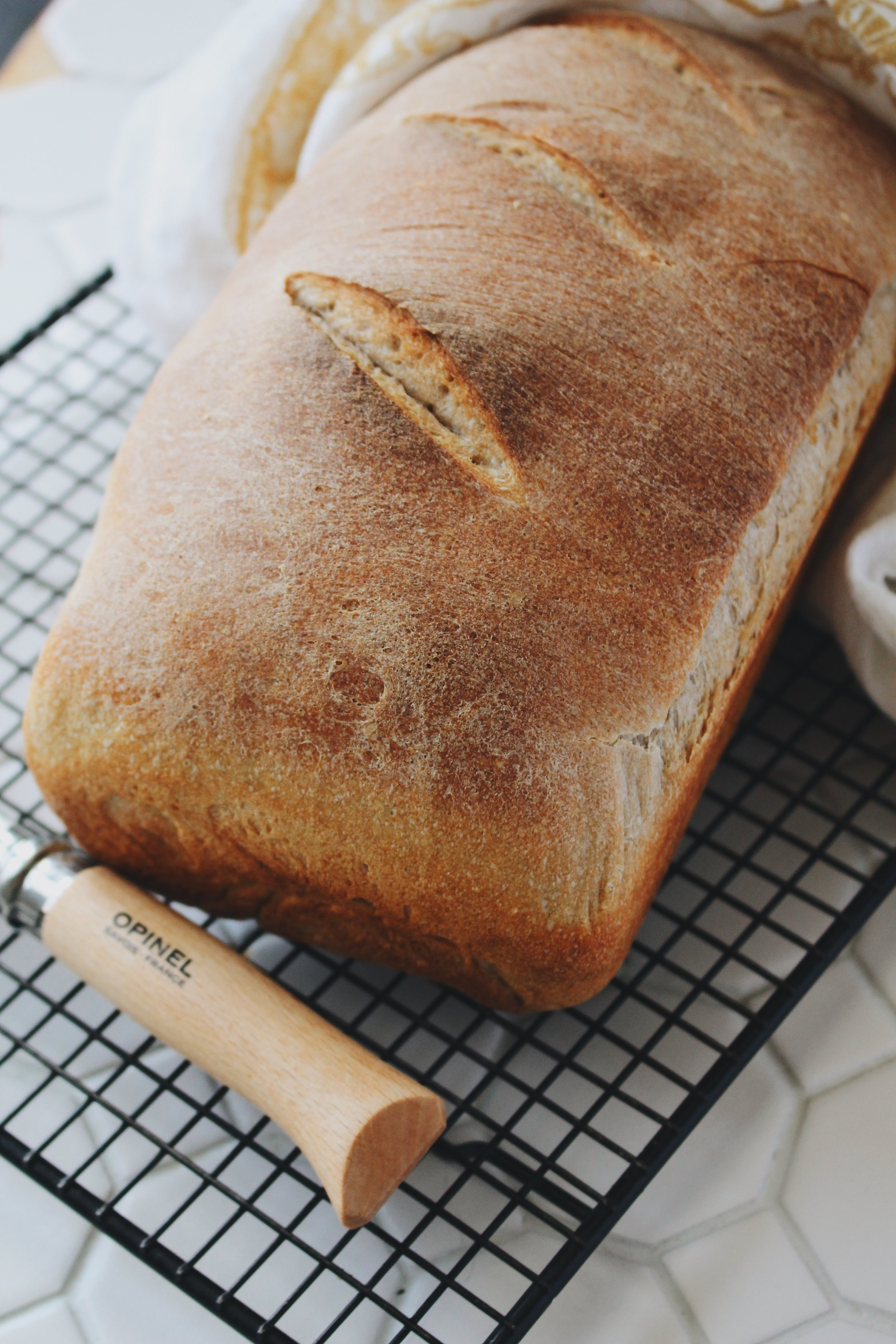 Sourdough Starter + A Bread Recipe