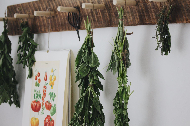 Drying + Preserving Fresh Herbs