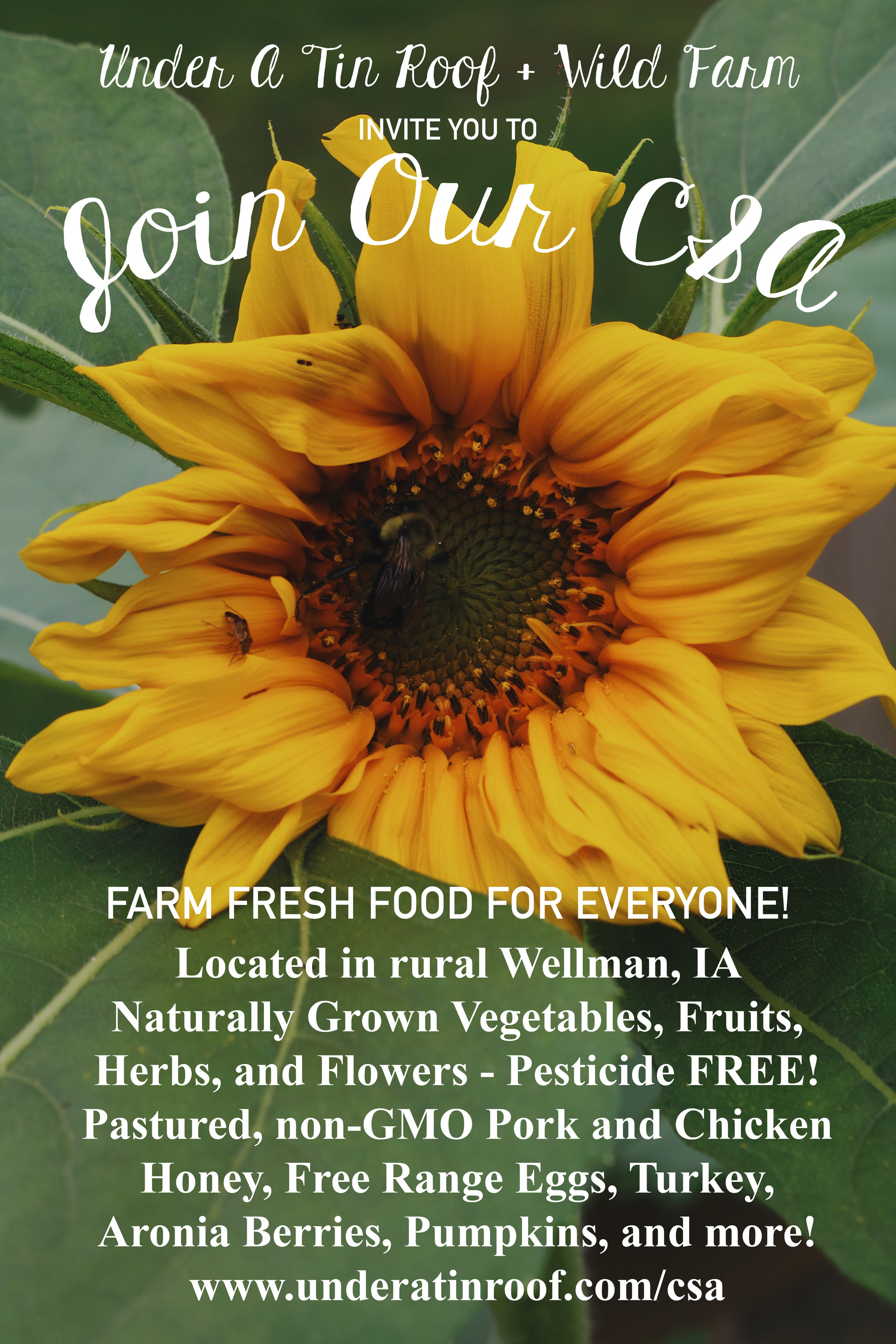 Join Our CSA Program! - Under A Tin Roof Blog