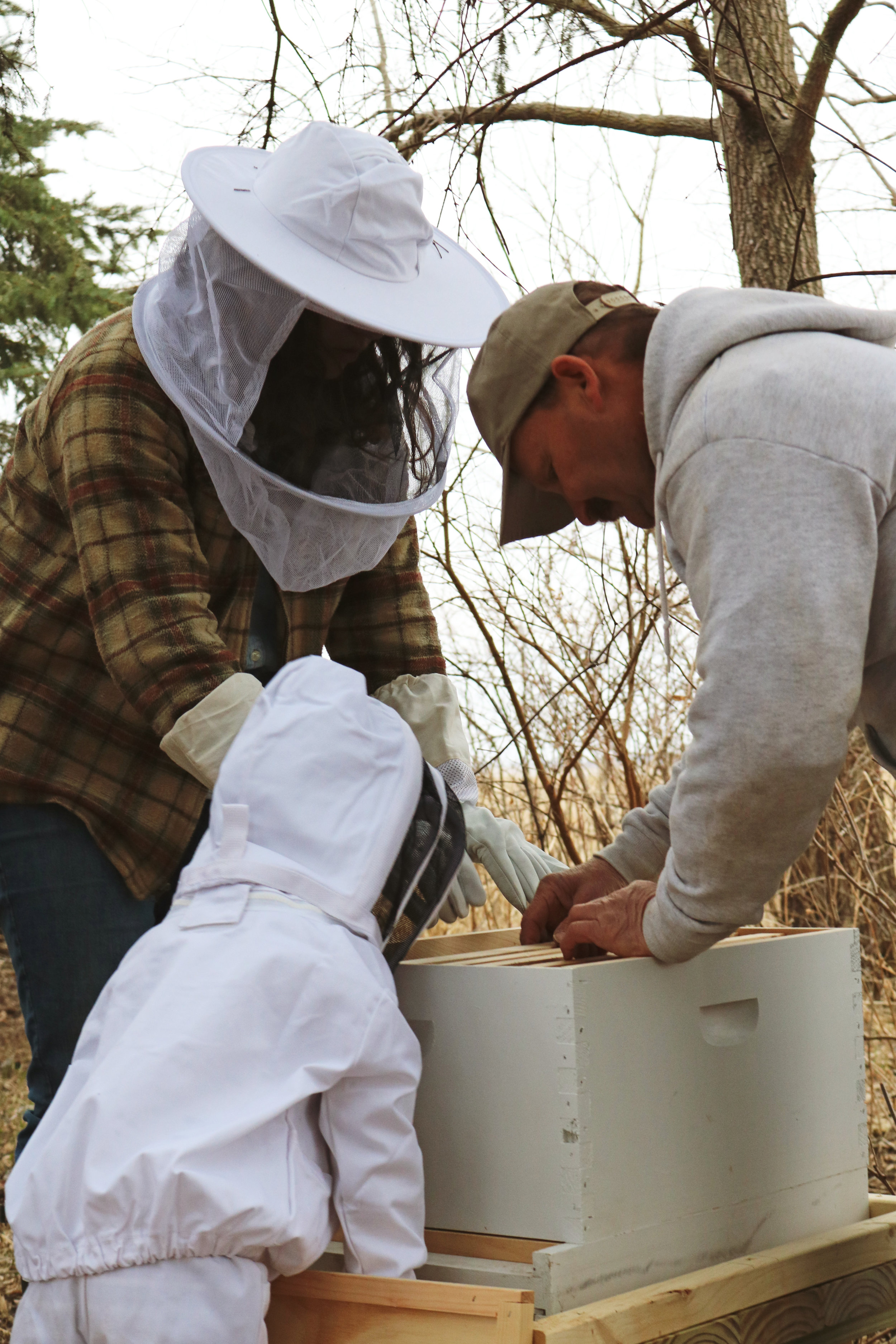 How to Install Honeybees - Under A Tin Roof Blog