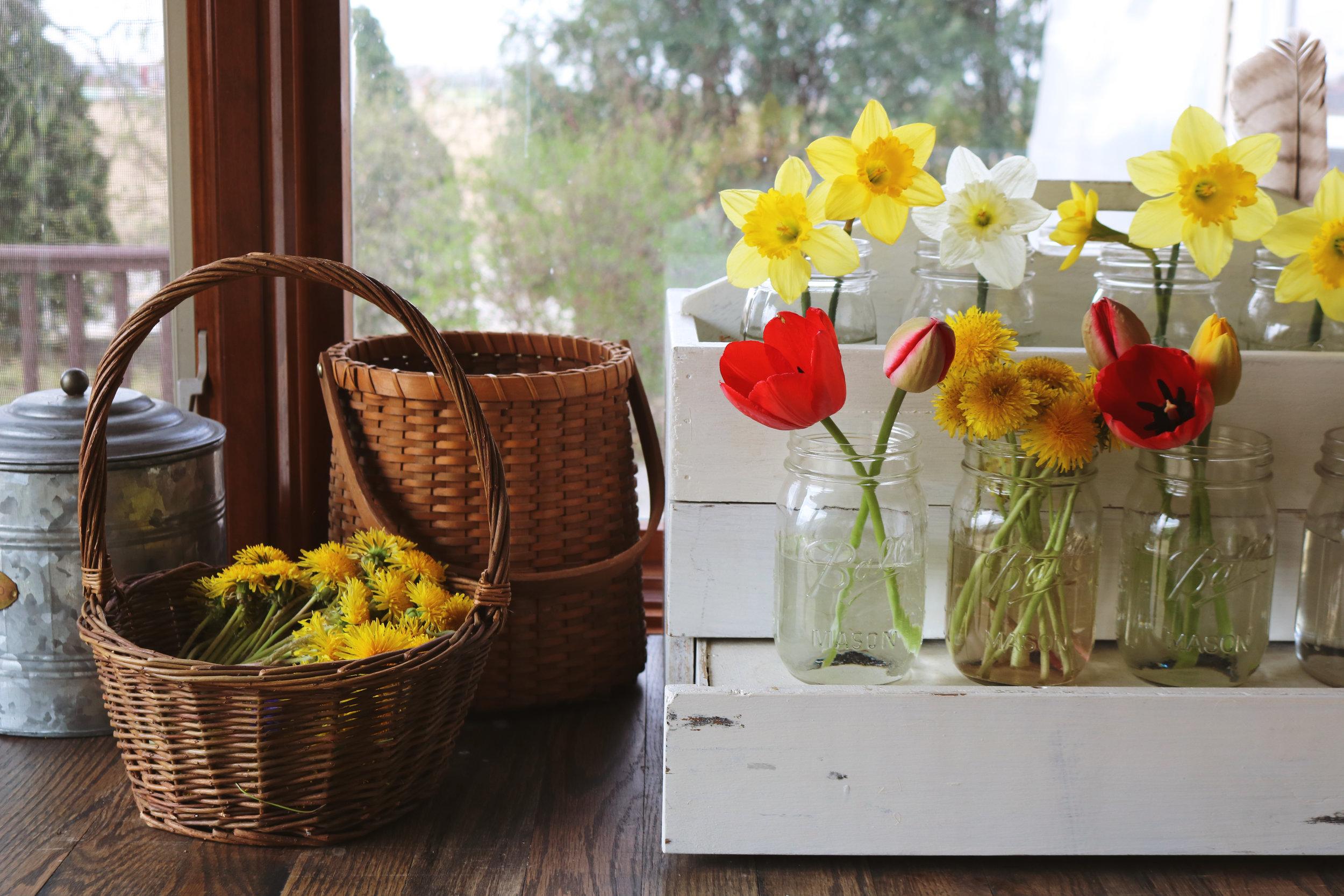 Dandelion Salve - Under A Tin Roof Blog