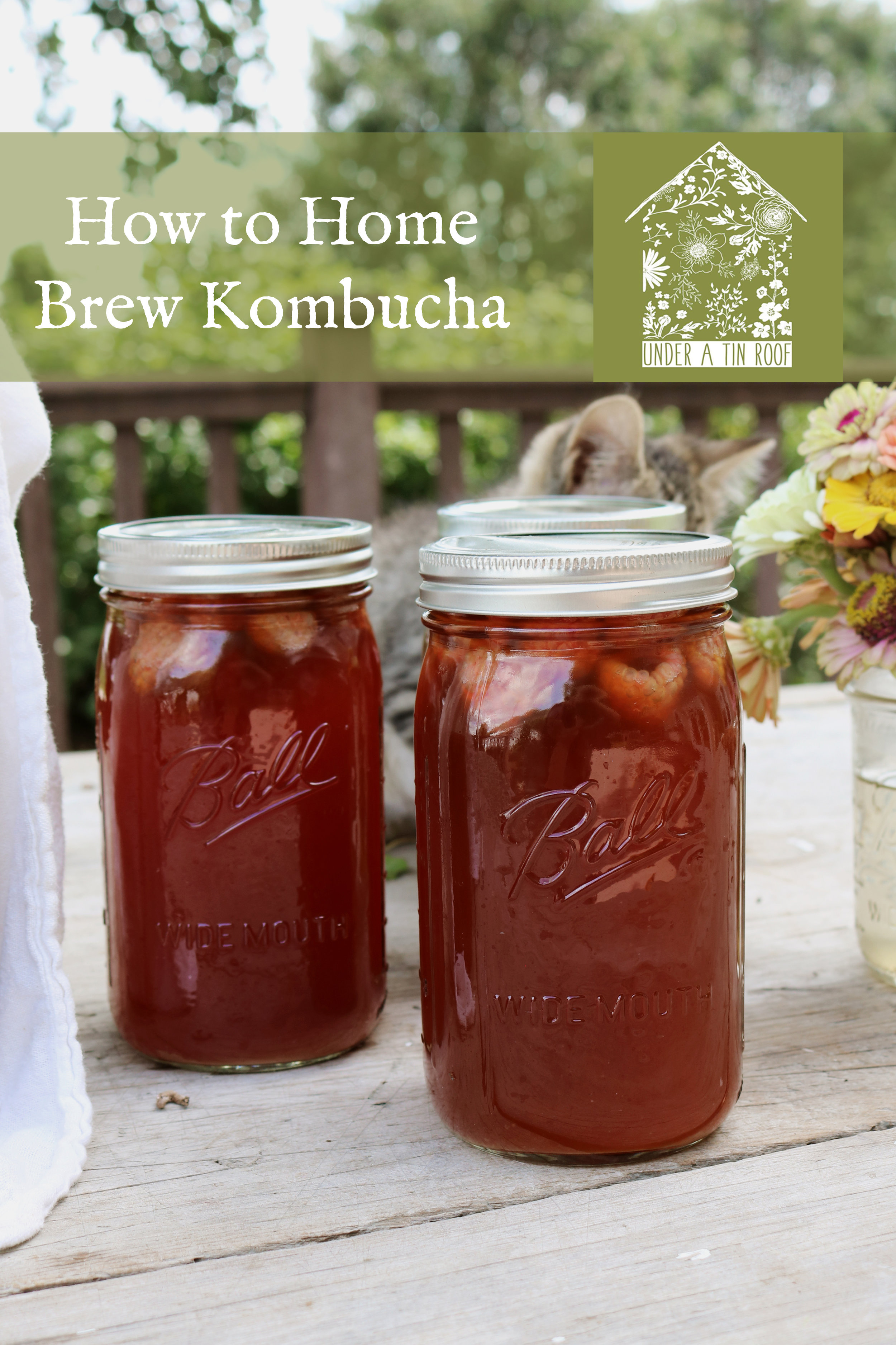 How to Make Kombucha - Under A Tin Roof Blog