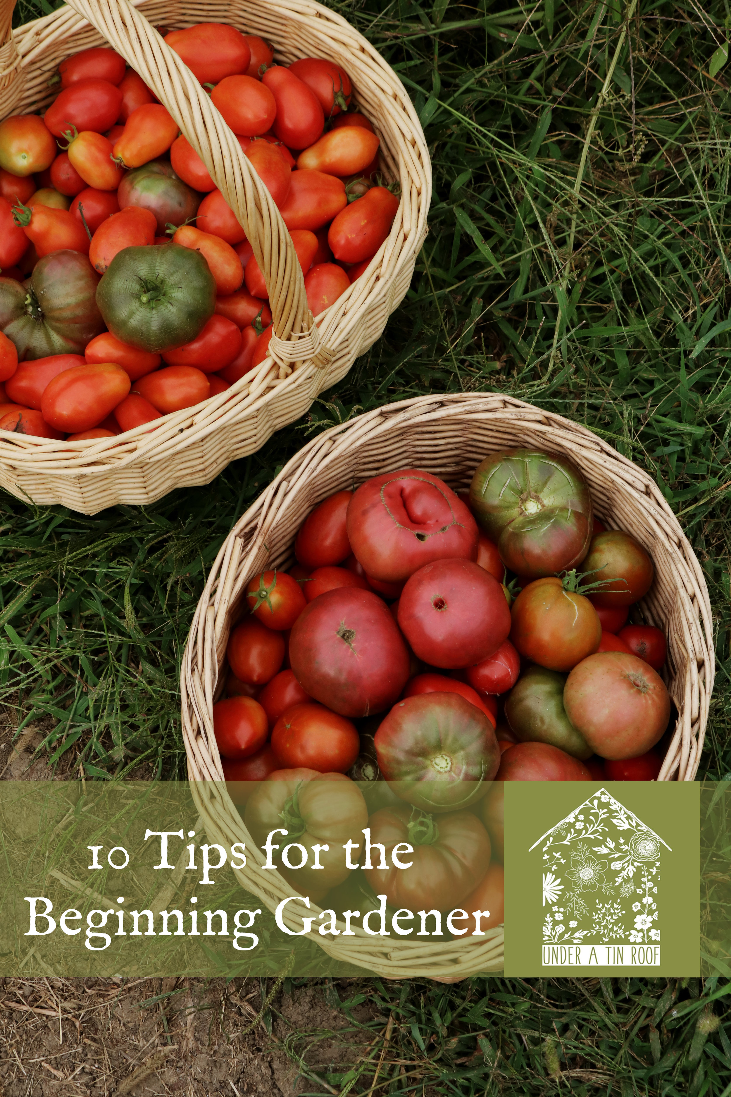 10 Tips for the Beginning Gardener - Under A Tin Roof Blog