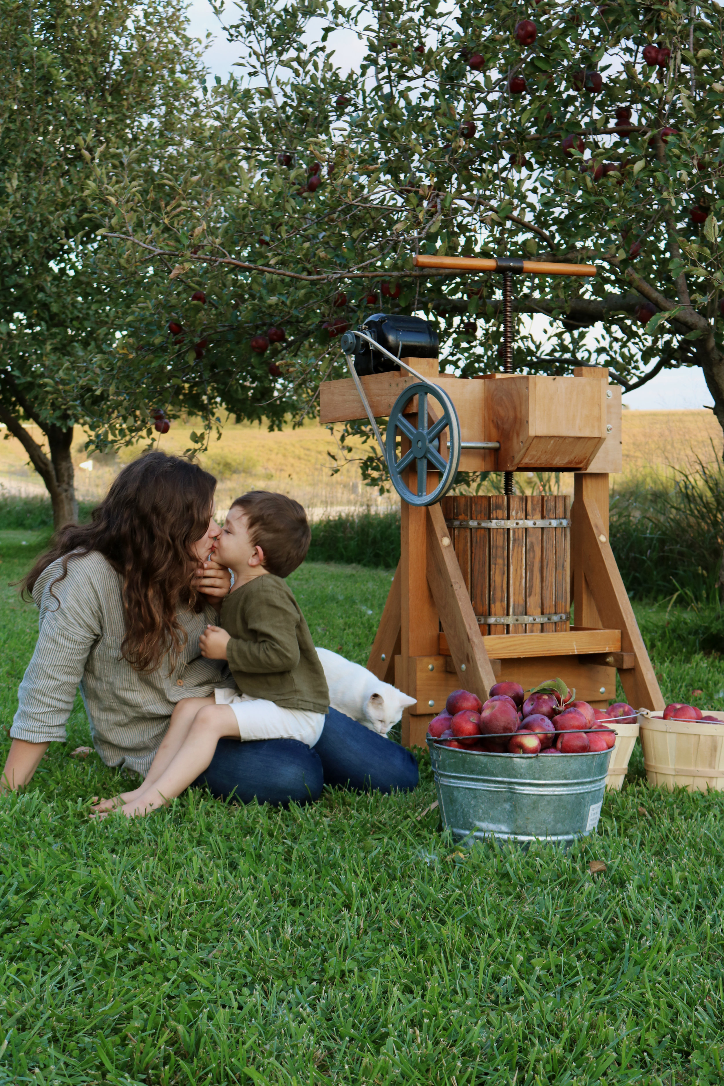 Apple Cider Daydreams - Under A Tin Roof Blog