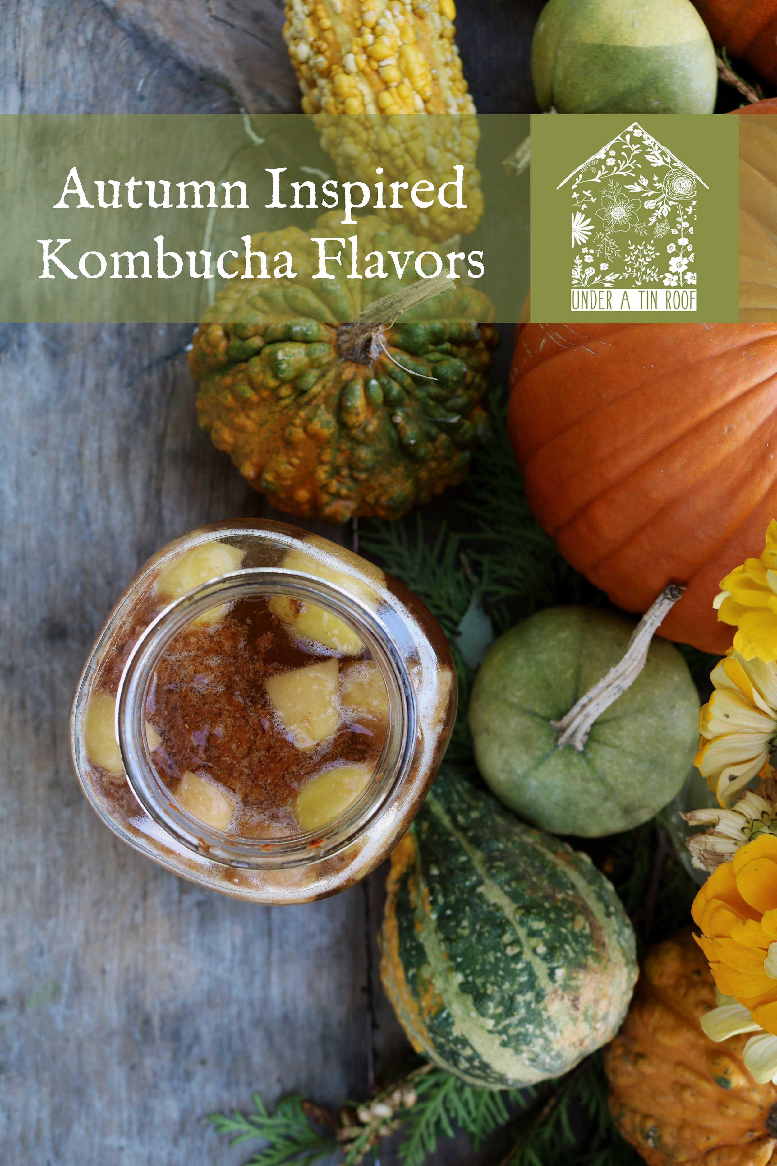 Autumn Kombucha Flavors - Under A Tin Roof Blog