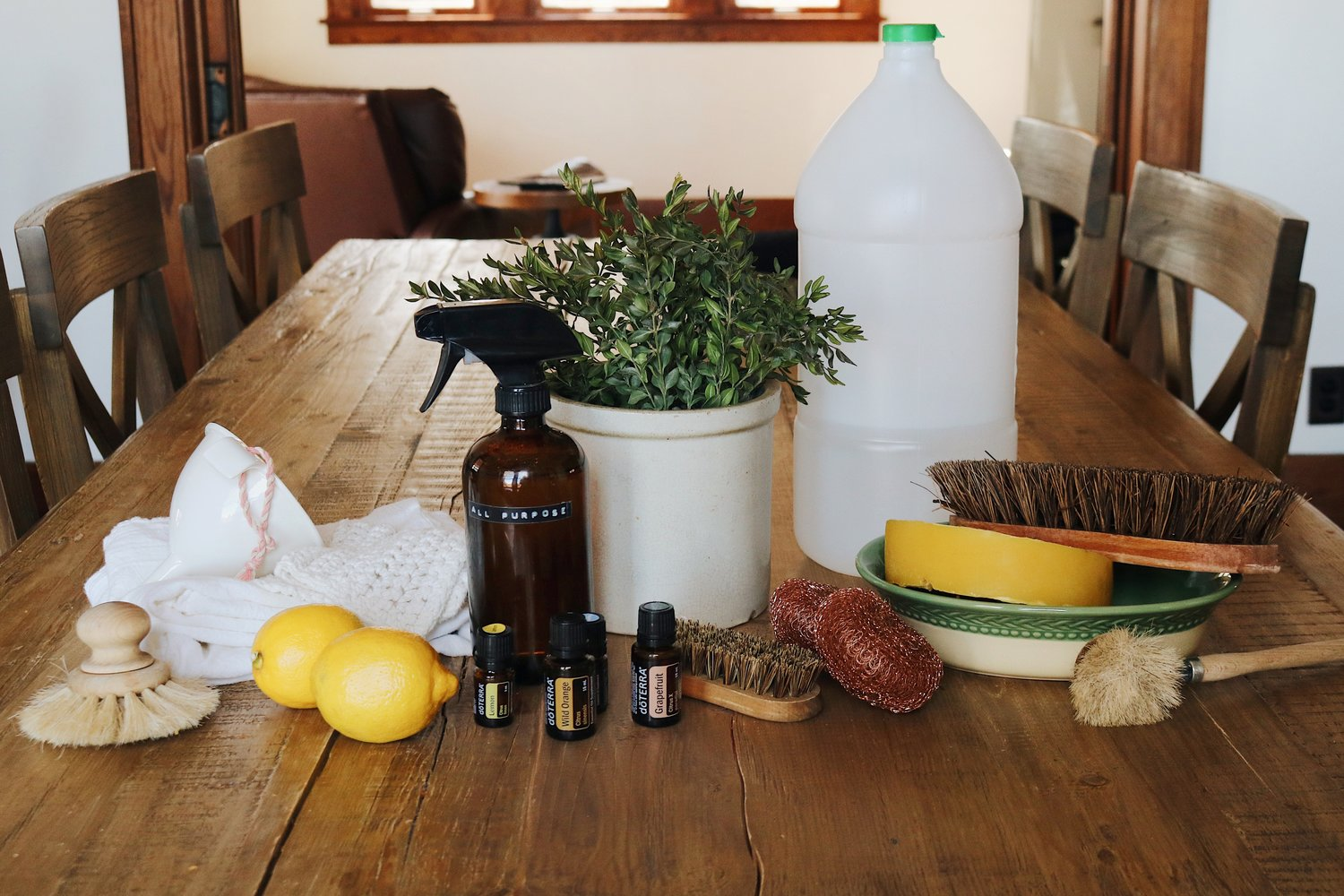 Zero Waste Cleaning Supplies + Recipe