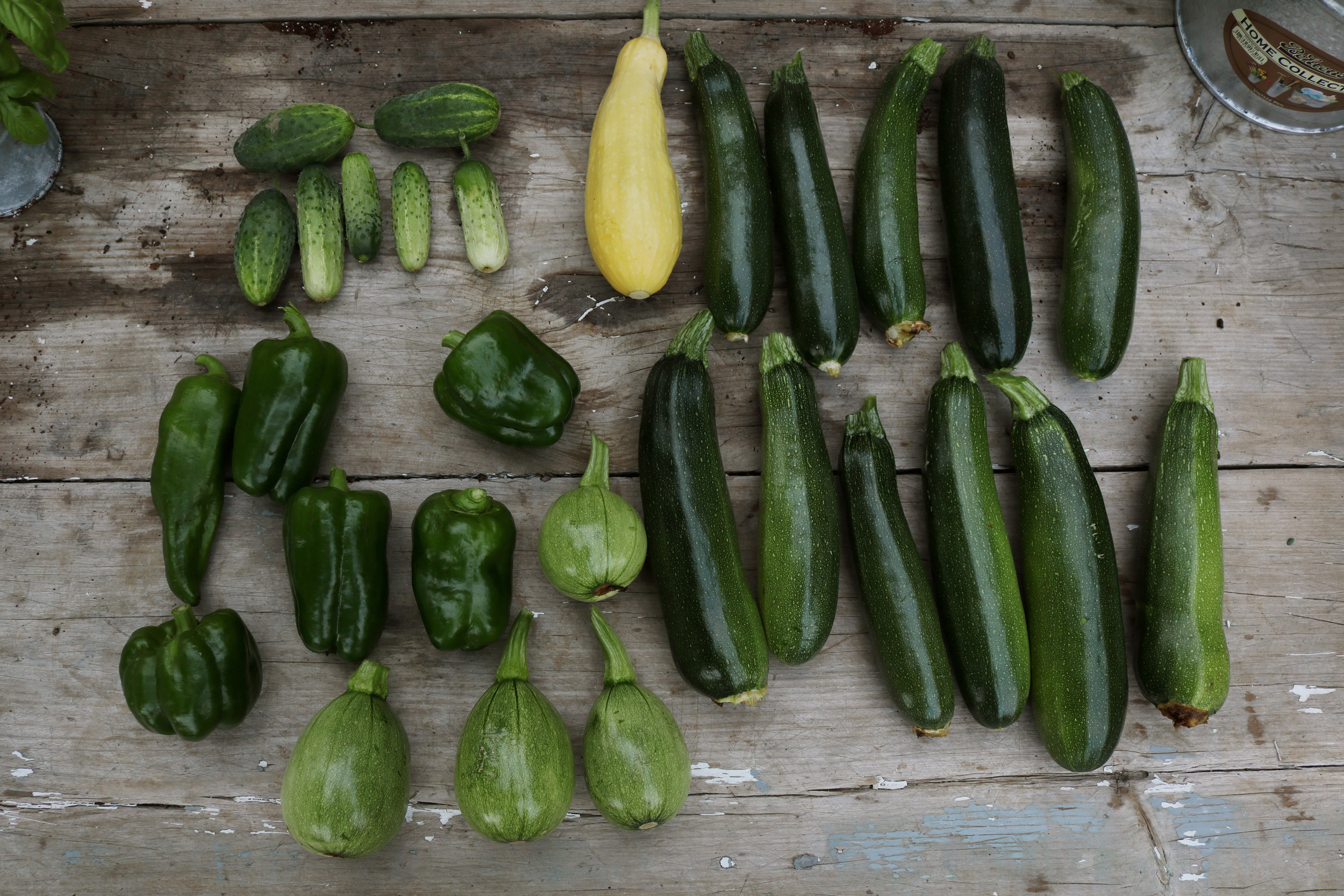 Meal Planning Around the Garden - Under A Tin Roof Blog