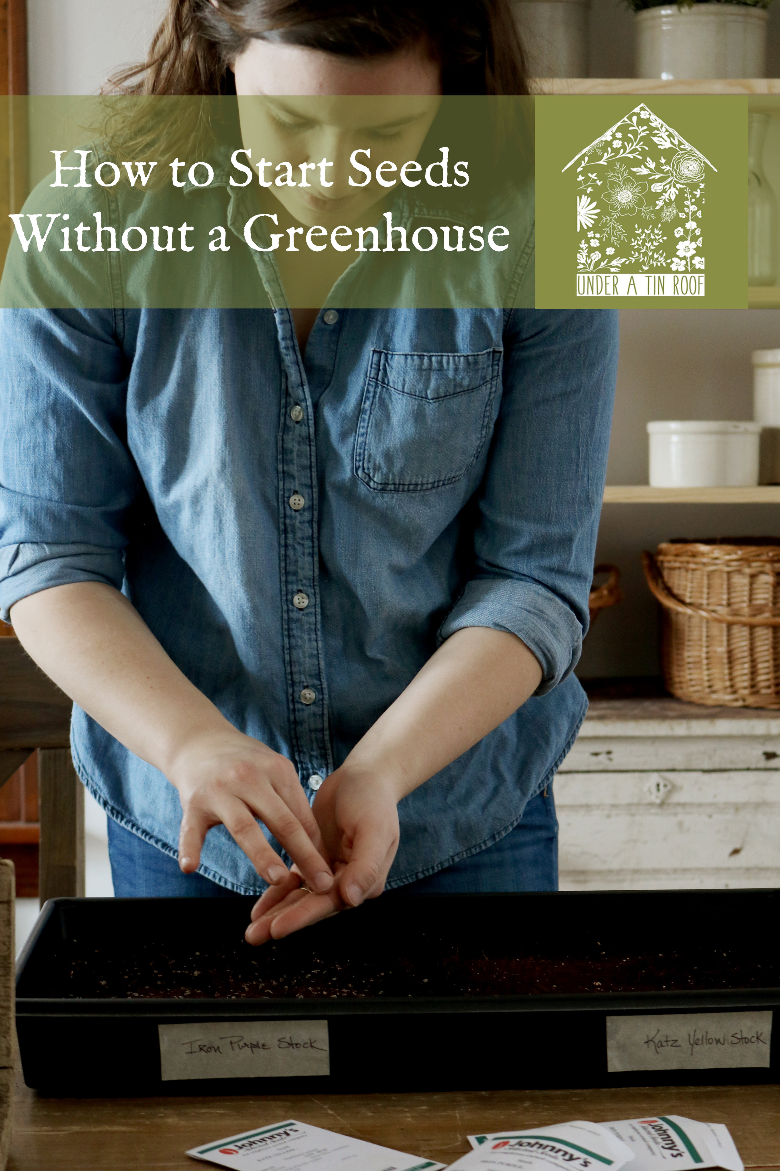 How to Start Seeds Without a Greenhouse - Under A Tin Roof Blog