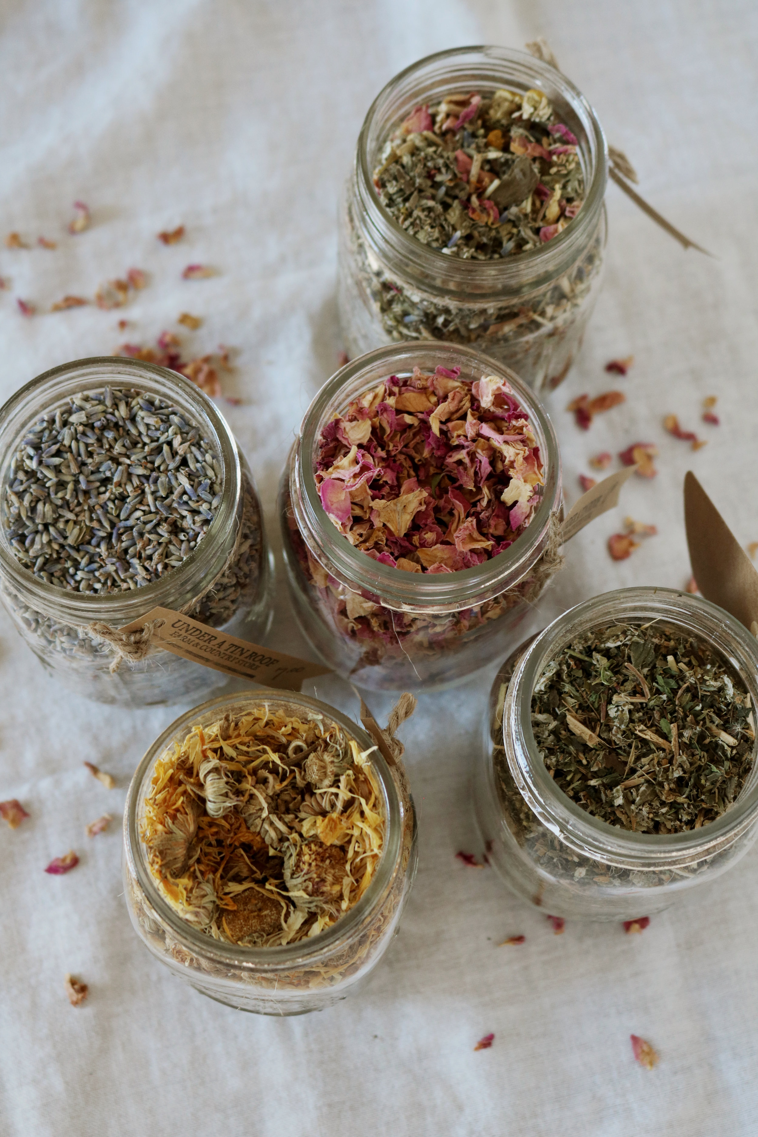 How to Brew Loose Leaf Tea - Under A Tin Roof Blog