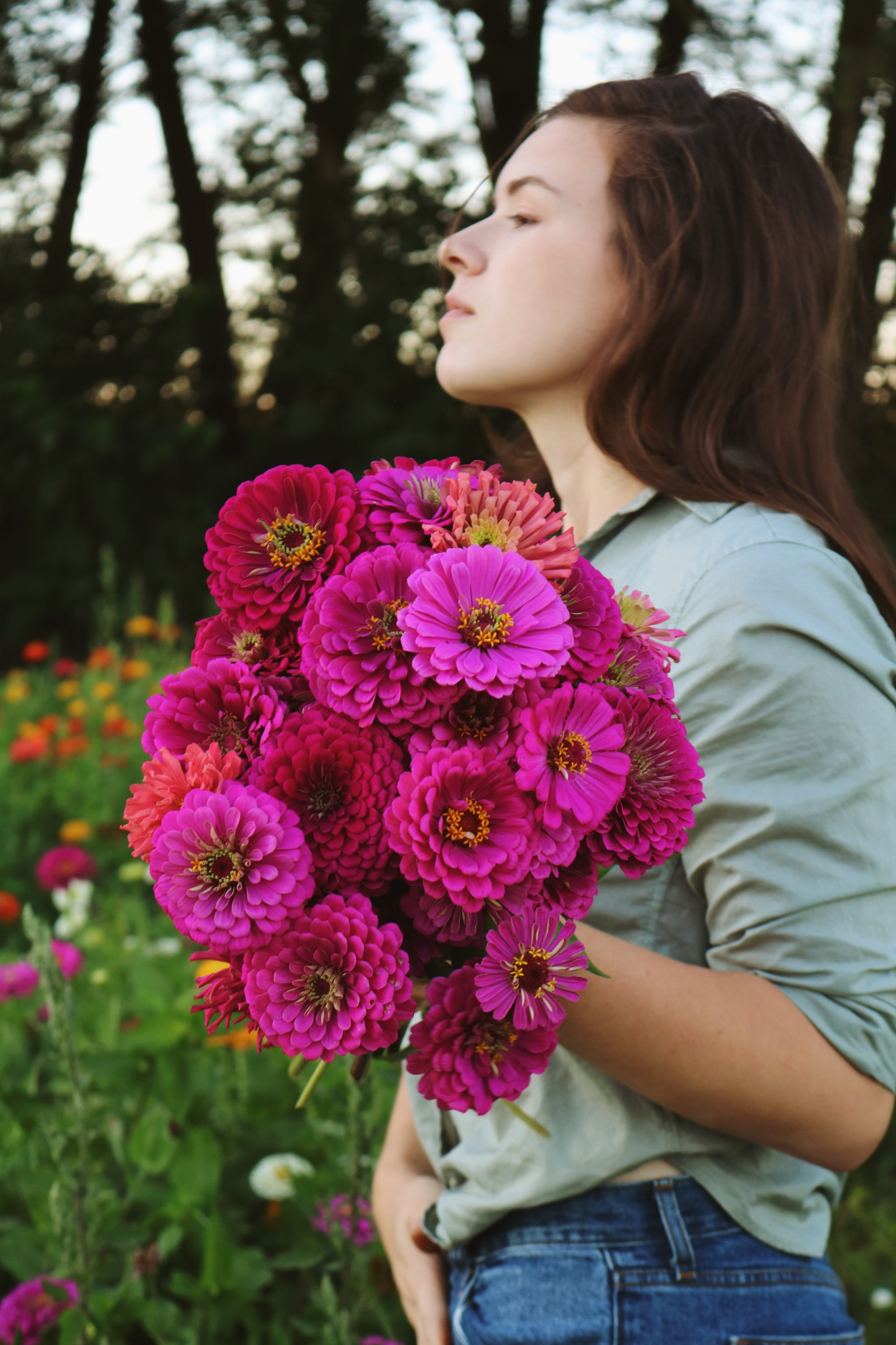 Our Favorite Zinnia Varieties - Under A Tin Roof Blog