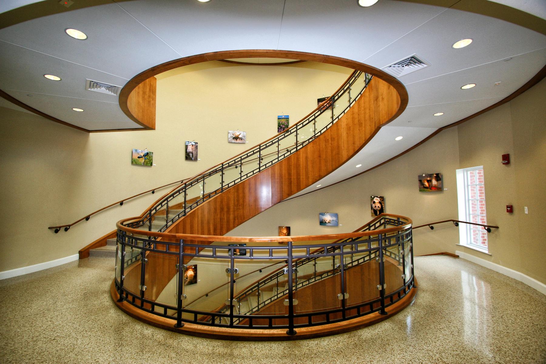 EDU_St Marys WSM Bldg_Staircase03_RGB_HR.jpg