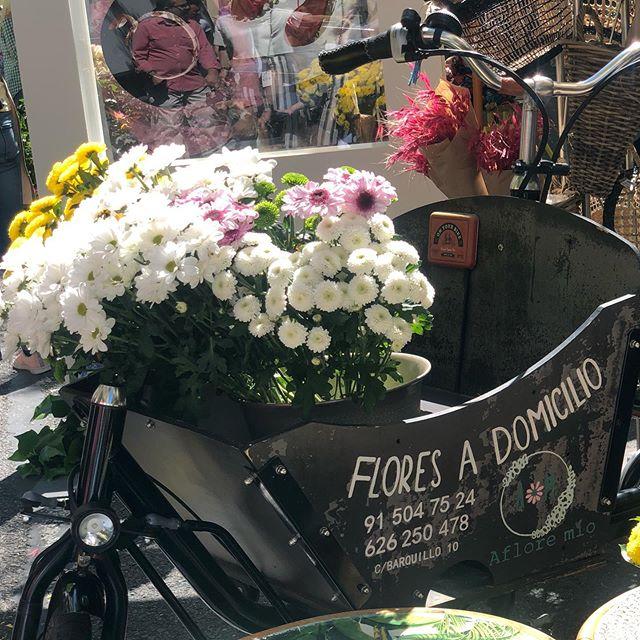 Os dejamos esta imagen de nuestra bicicleta cargadora de flores . Feliz Sábado !!! #floresadomicilio #florespararegalar #flores #luxuryflower #afloremio