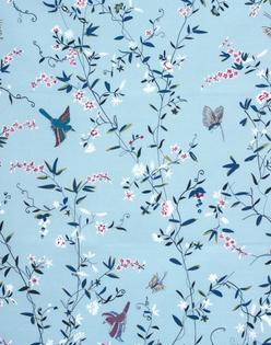 Hermitage Birds