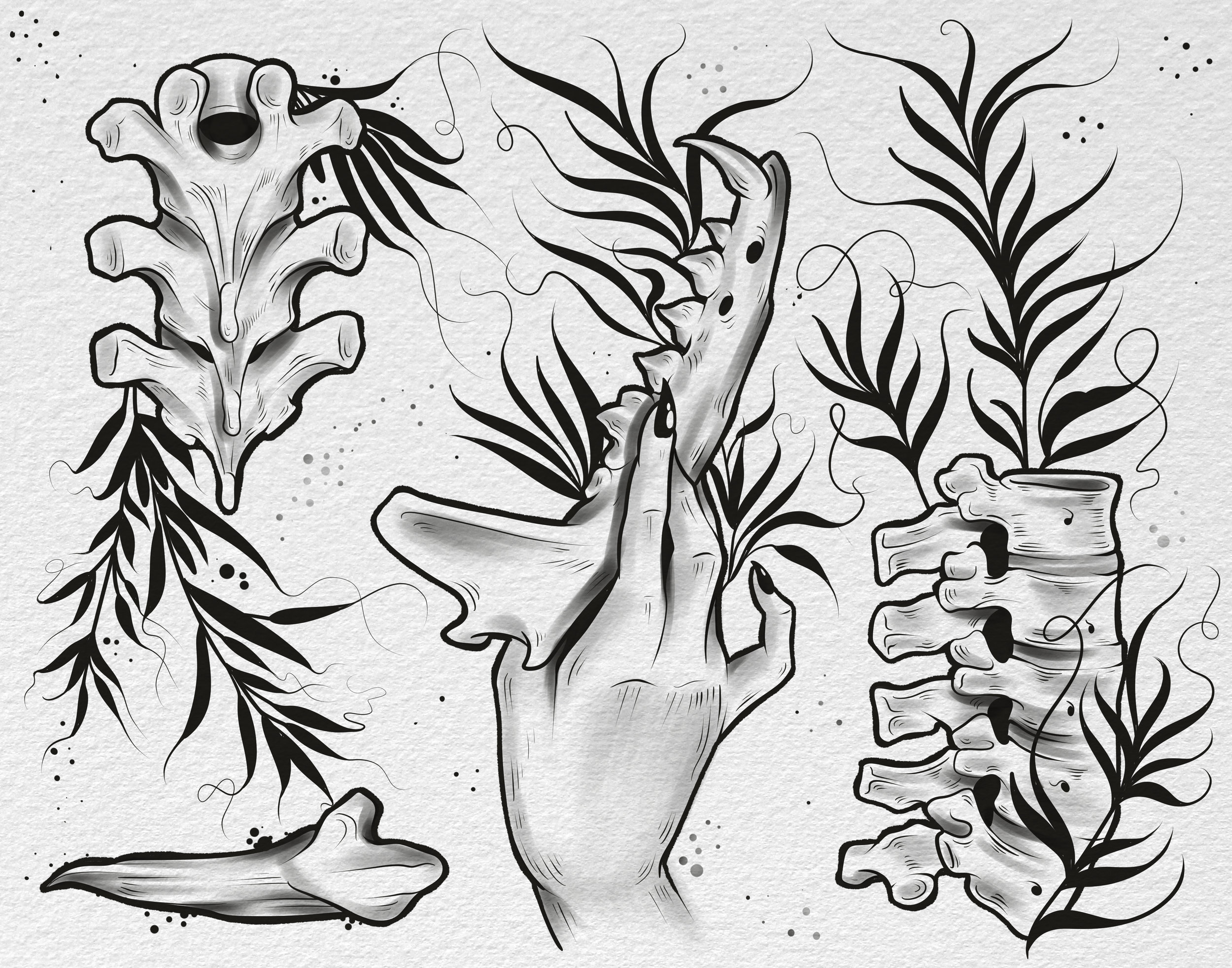 bonesandflowersinsta2.jpg
