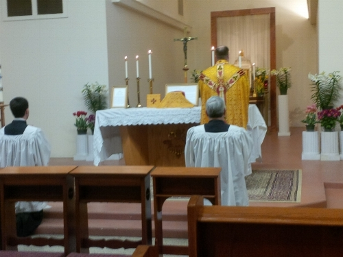 Gospel and Homily: