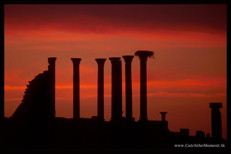 Sunset on ruins.jpg