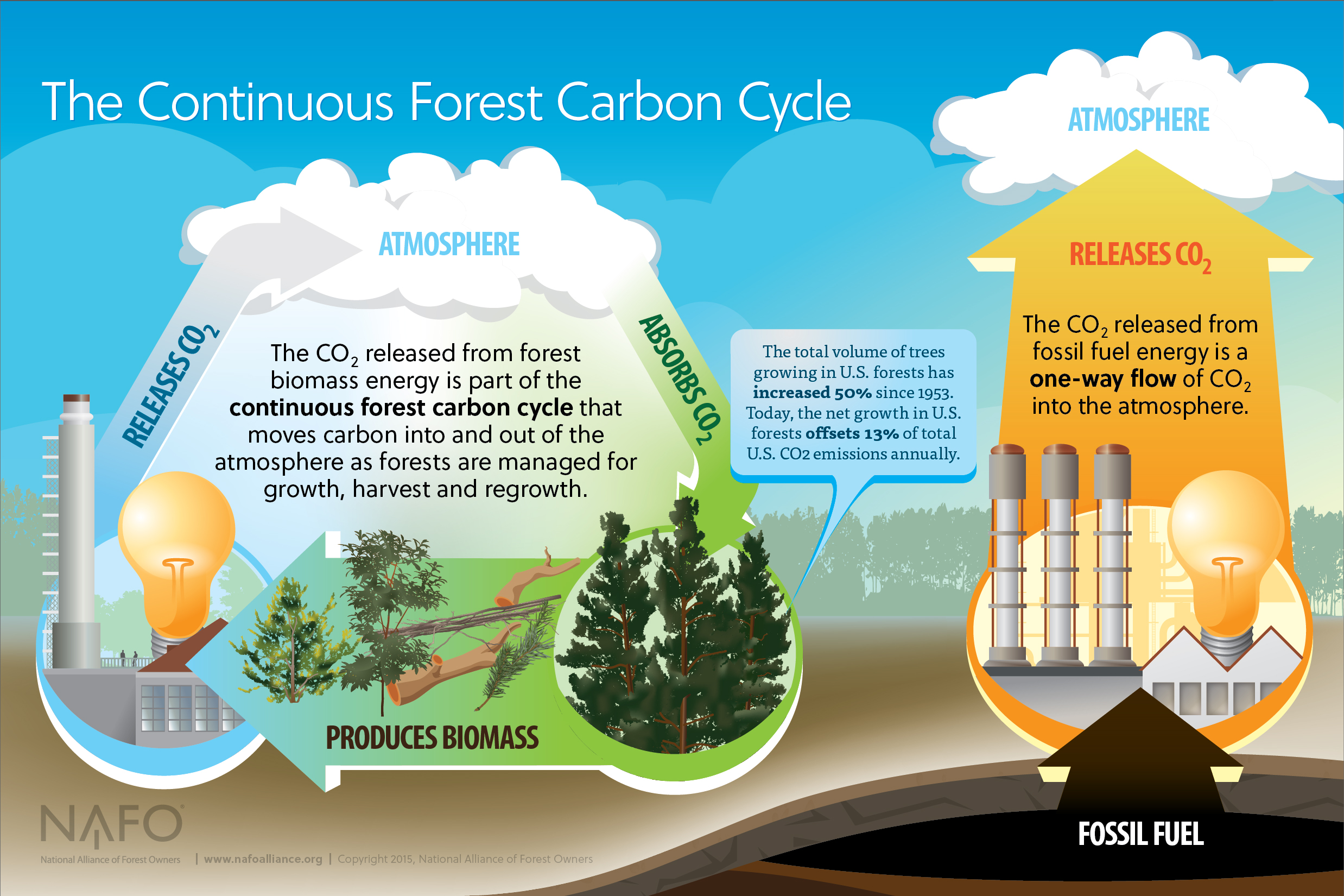 Courtesy National Alliance of Forest Owners