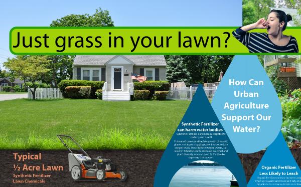 lawn thumb 2.jpg