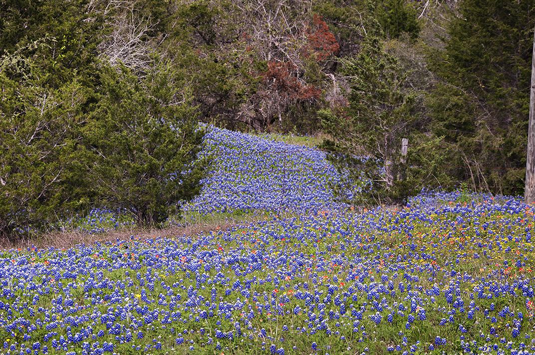 Taken near Navasota, Texas in April 2012