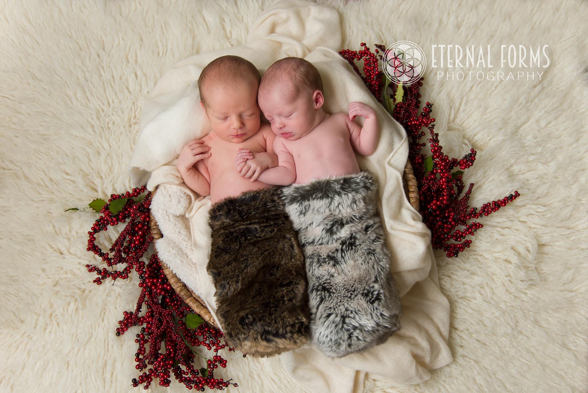 round rock newborn twin photographer 10
