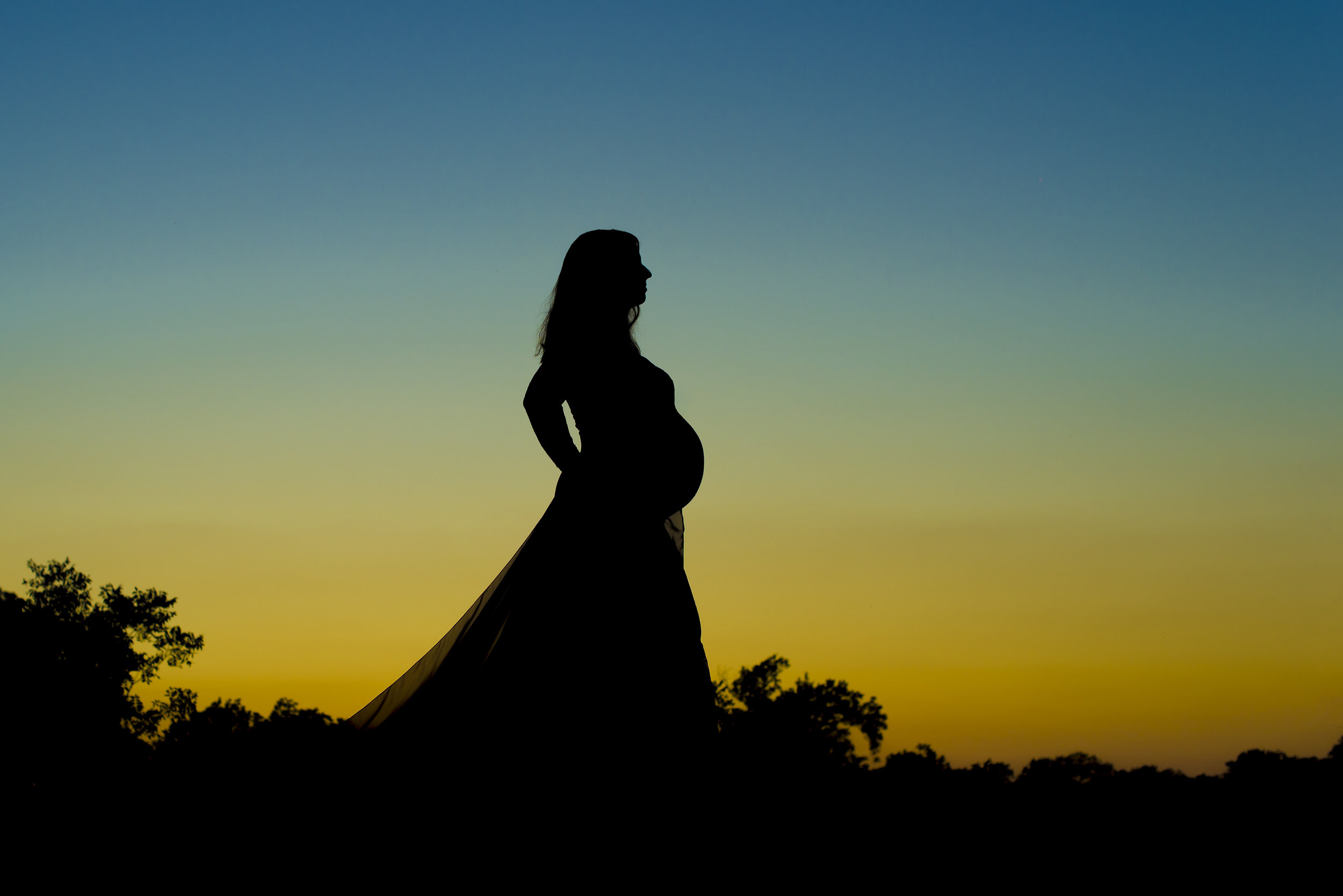 elegant, colorful pregnancy silhouette