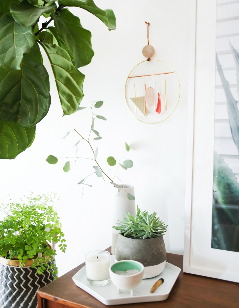 Great tutorial here from Amber Lewis on how-to incorporate plant life in your home