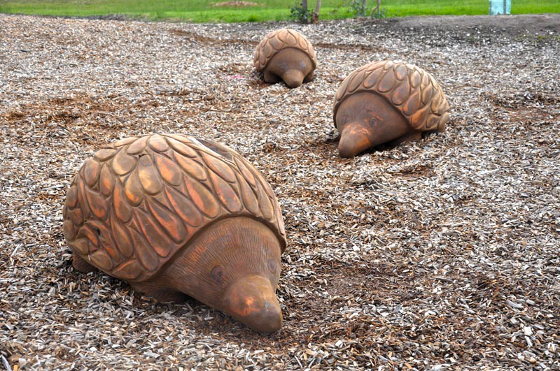 Wooden Echidna sculptures at Jan Juc Park by Glenn Romanis
