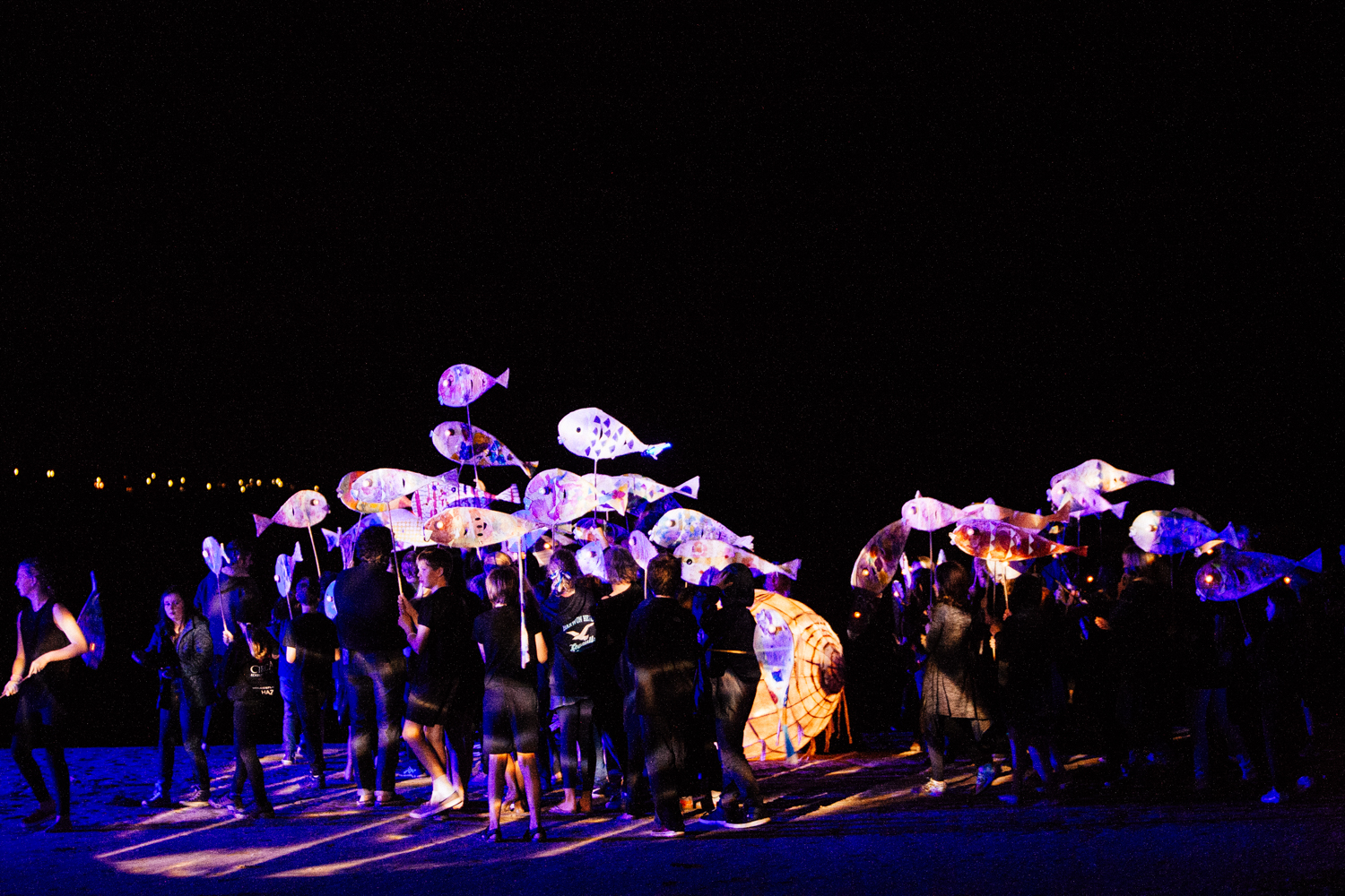 The school of fish puppets at The Gathering of the Elements ceremony.   Image by Dean Walters Photography .