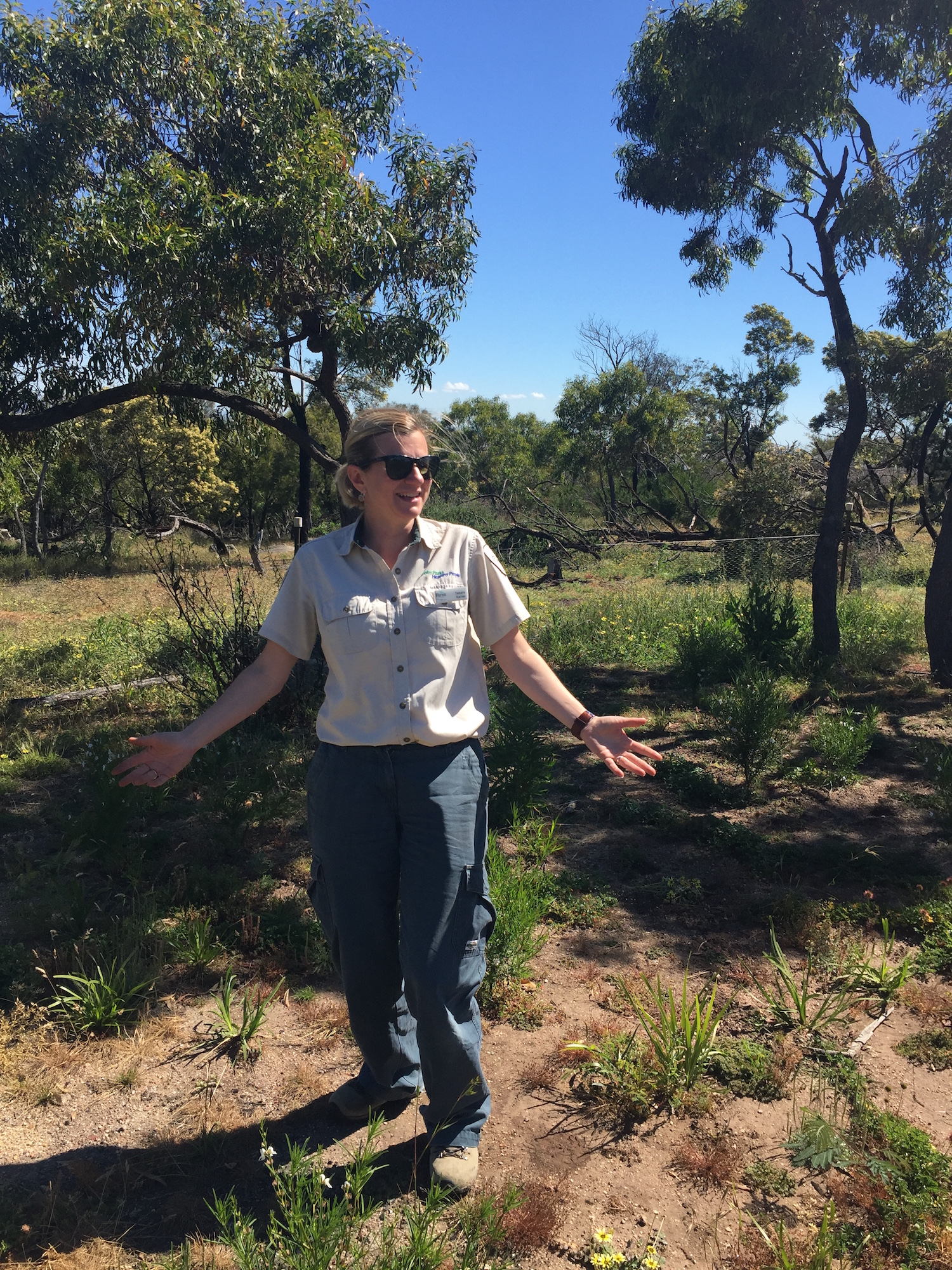 amara Karner, Ranger Team Leader at You Yangs Regional Park is thrilled with the success of the Mountain to Mouth 2016 planting at Big Rock.