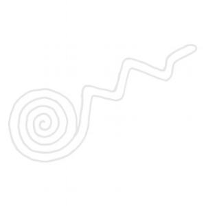 Revised Icon 2.jpg