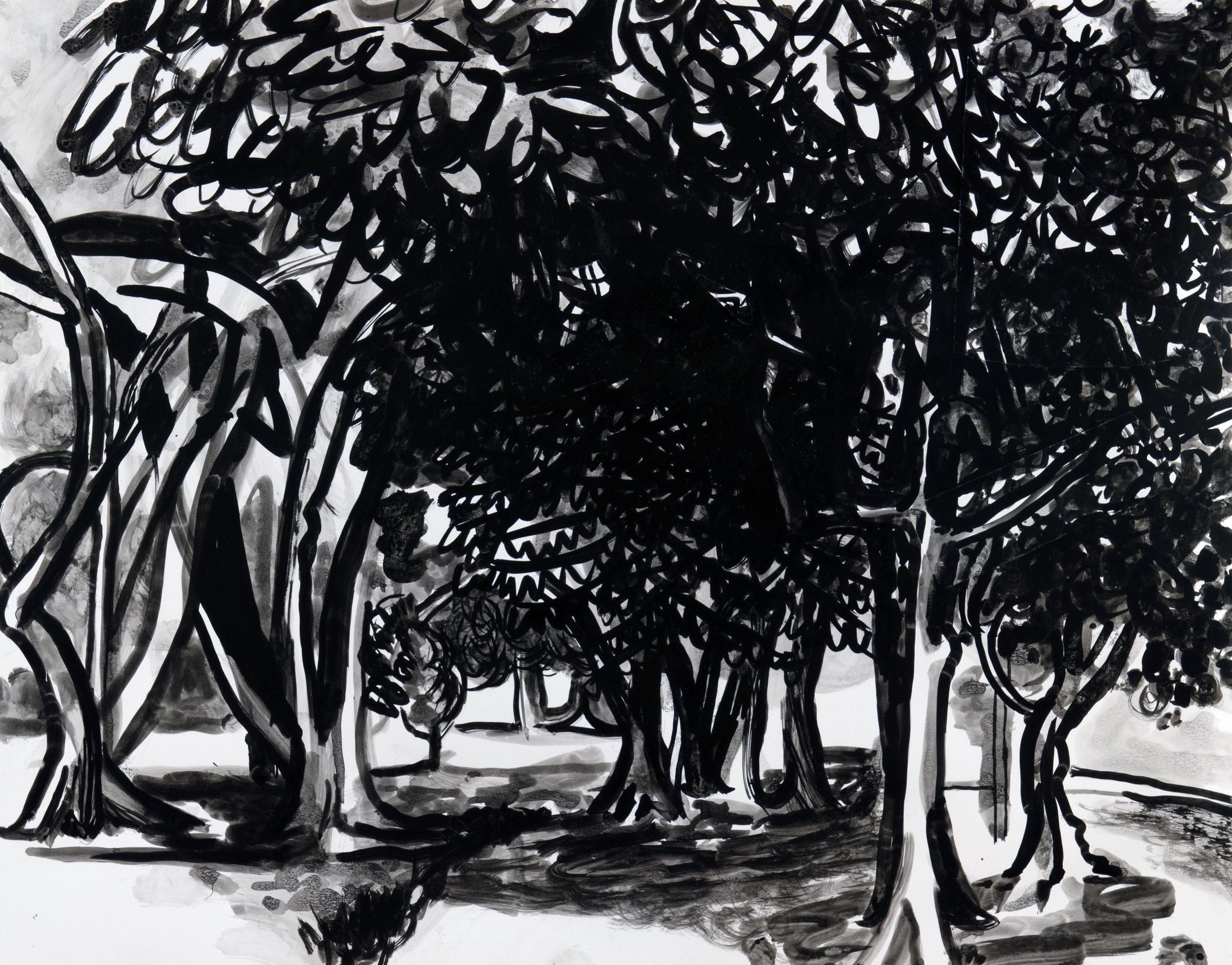 Humboldt Park Trees 2013