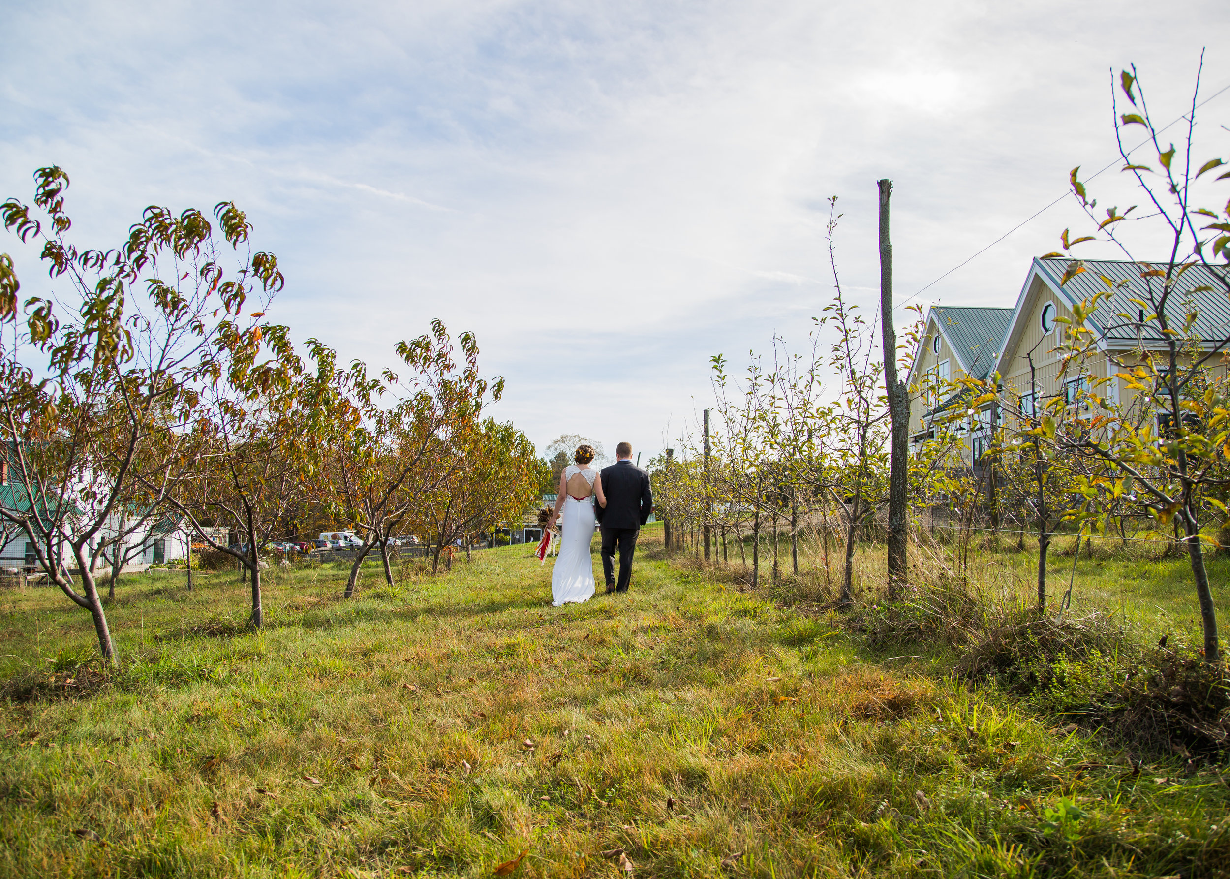 Wedding-Preview-20.jpg