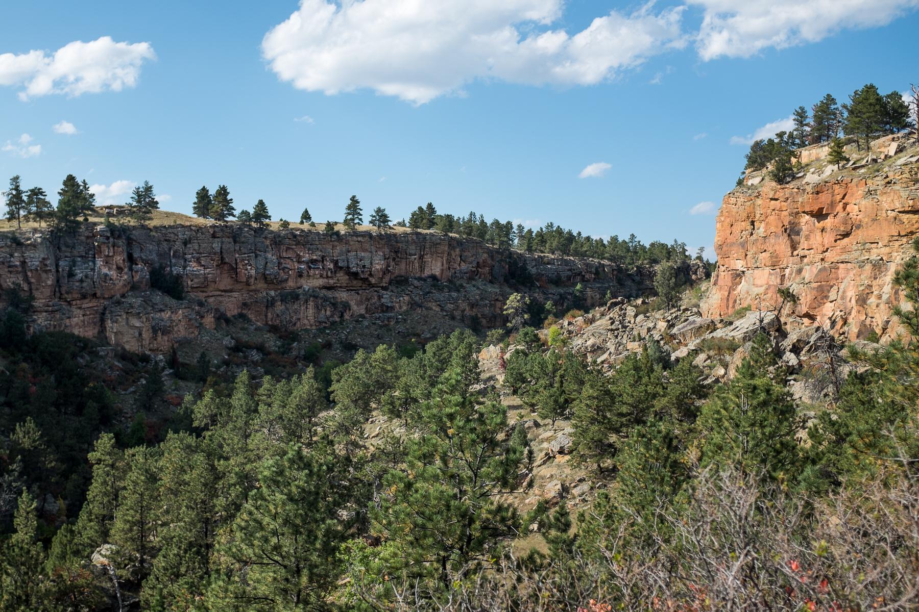 Sheep Canyon.