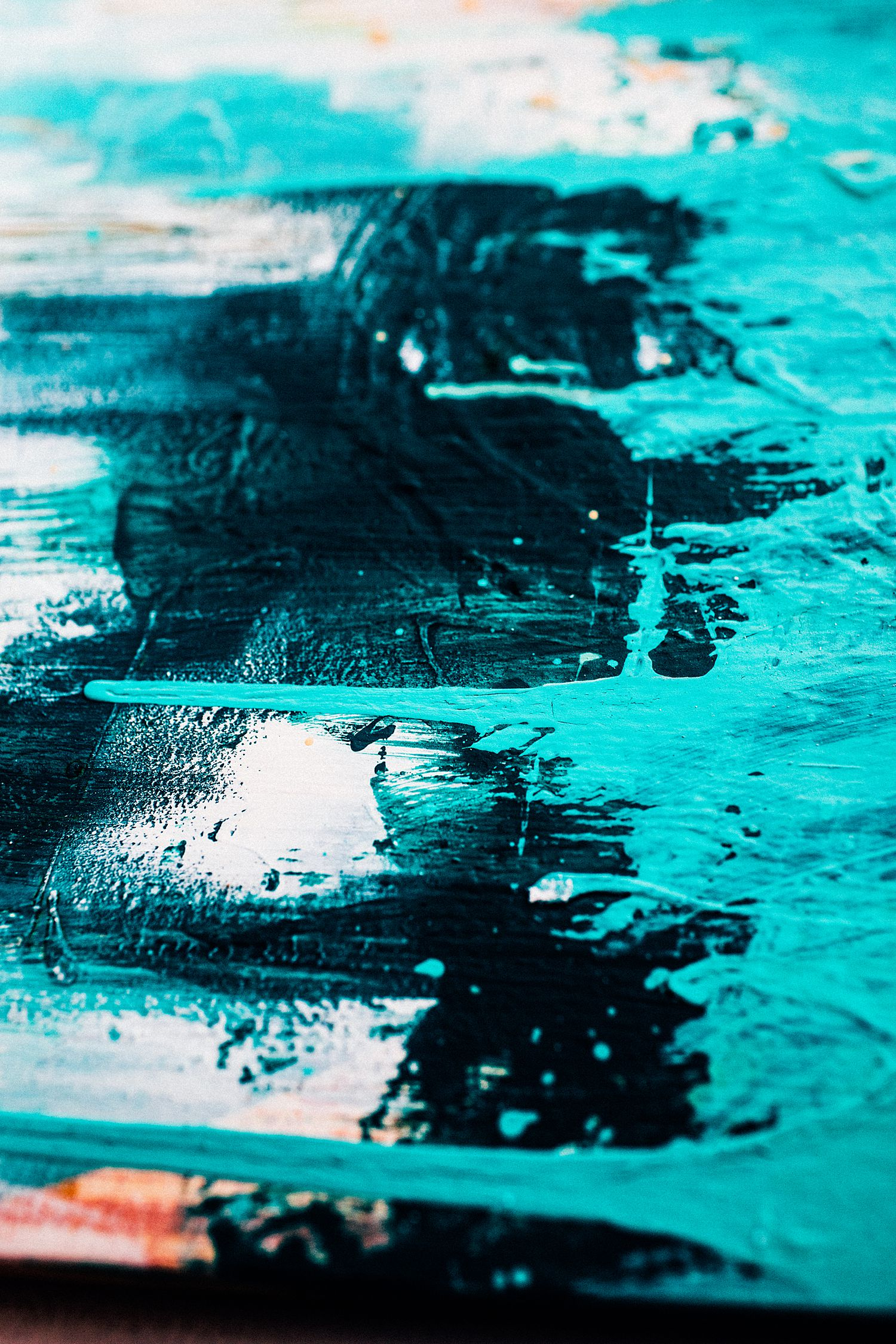 Cha Wilde Paintings - February 2019-6_WEB.jpg