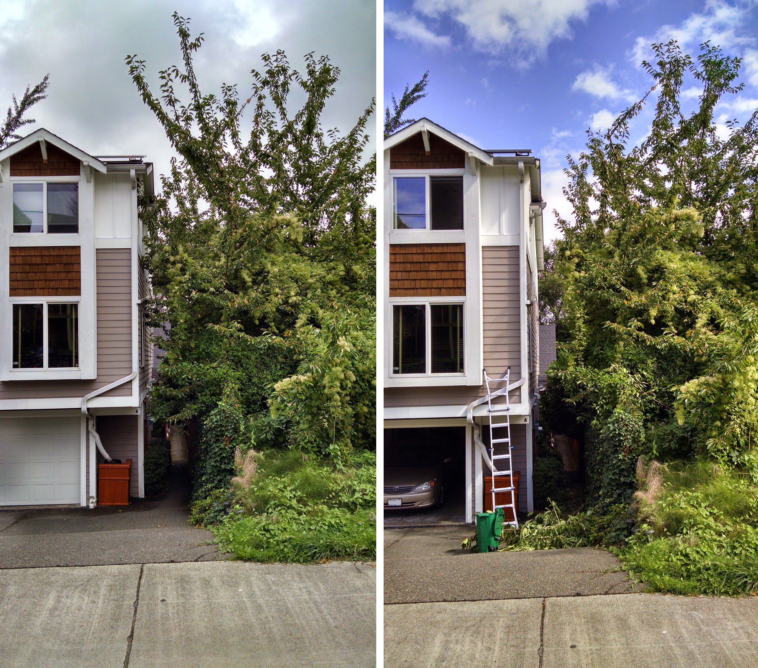 Before pruning on the left, after pruning on the right.