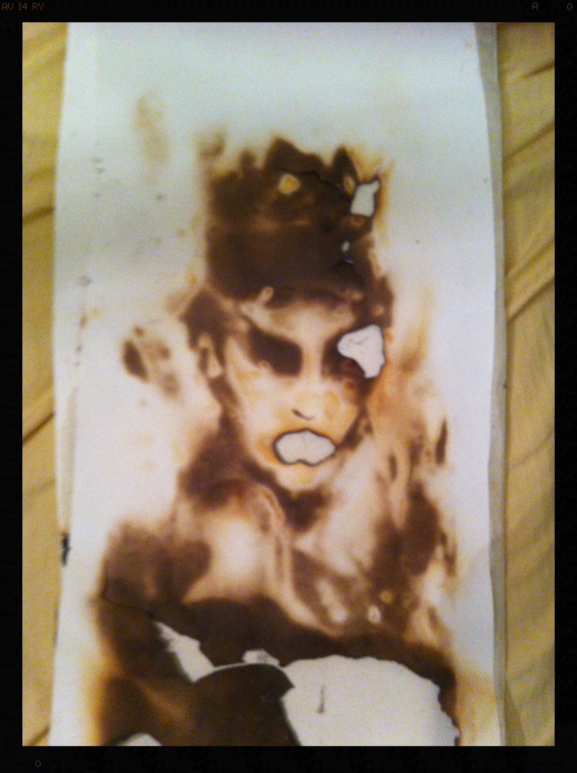 Promotional Art.  Swan Queen.  Fire on paper (2014). Artist  Igor Josifov .