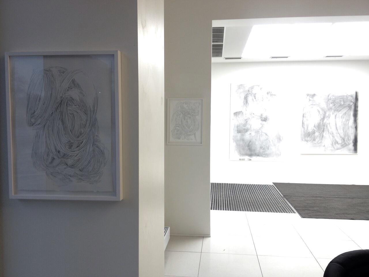 Pelikan, 2015 (TM51 Window Gallery)