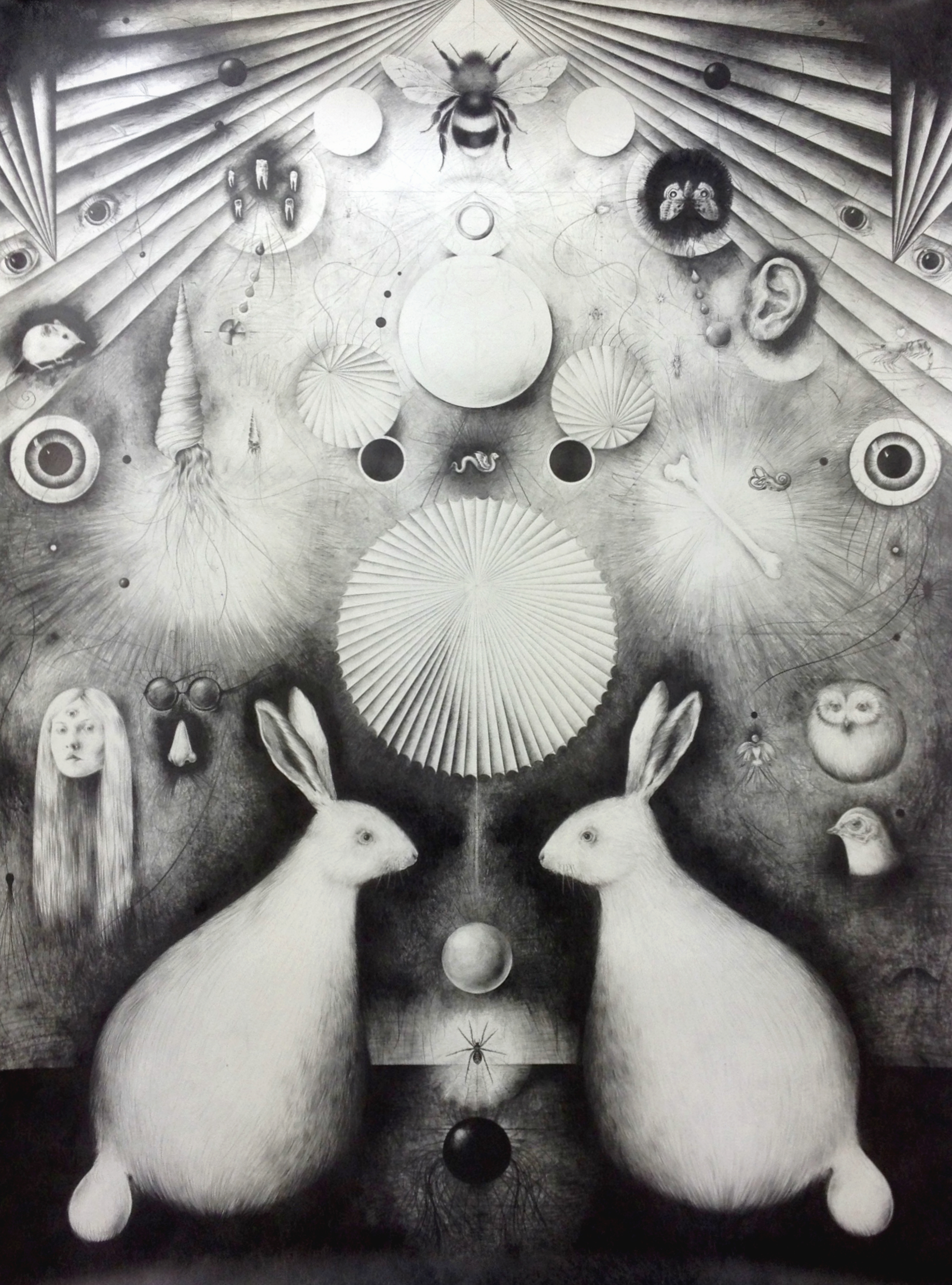 Solveig Bergene, 'O', 2015
