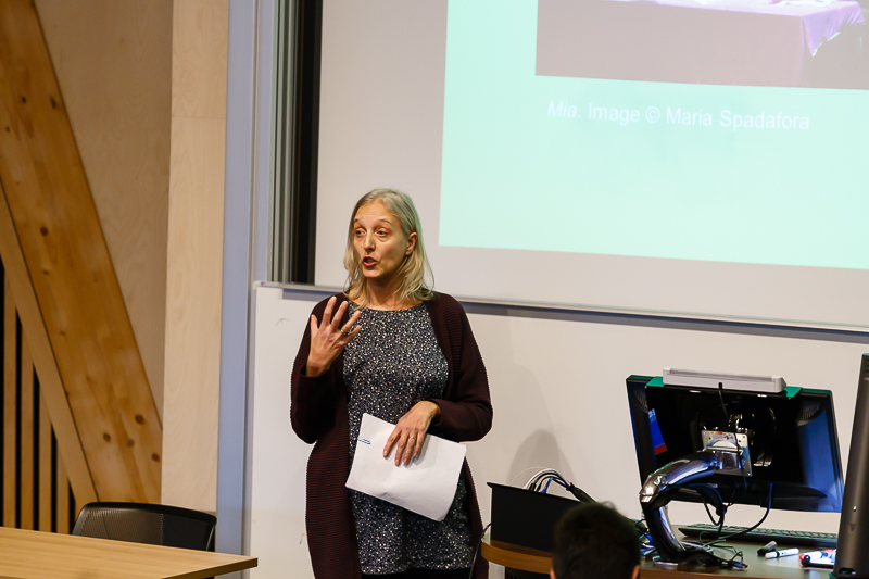 CHASE Scholars Showcase Judith Johnson (University of Essex), New Landscapes, New Eyes: A playwright's journey into theatre of learning-disability.