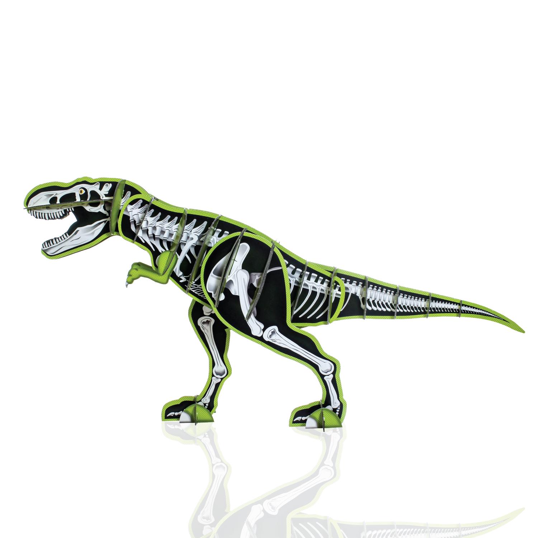 giant dinosaur model kit 07.jpg