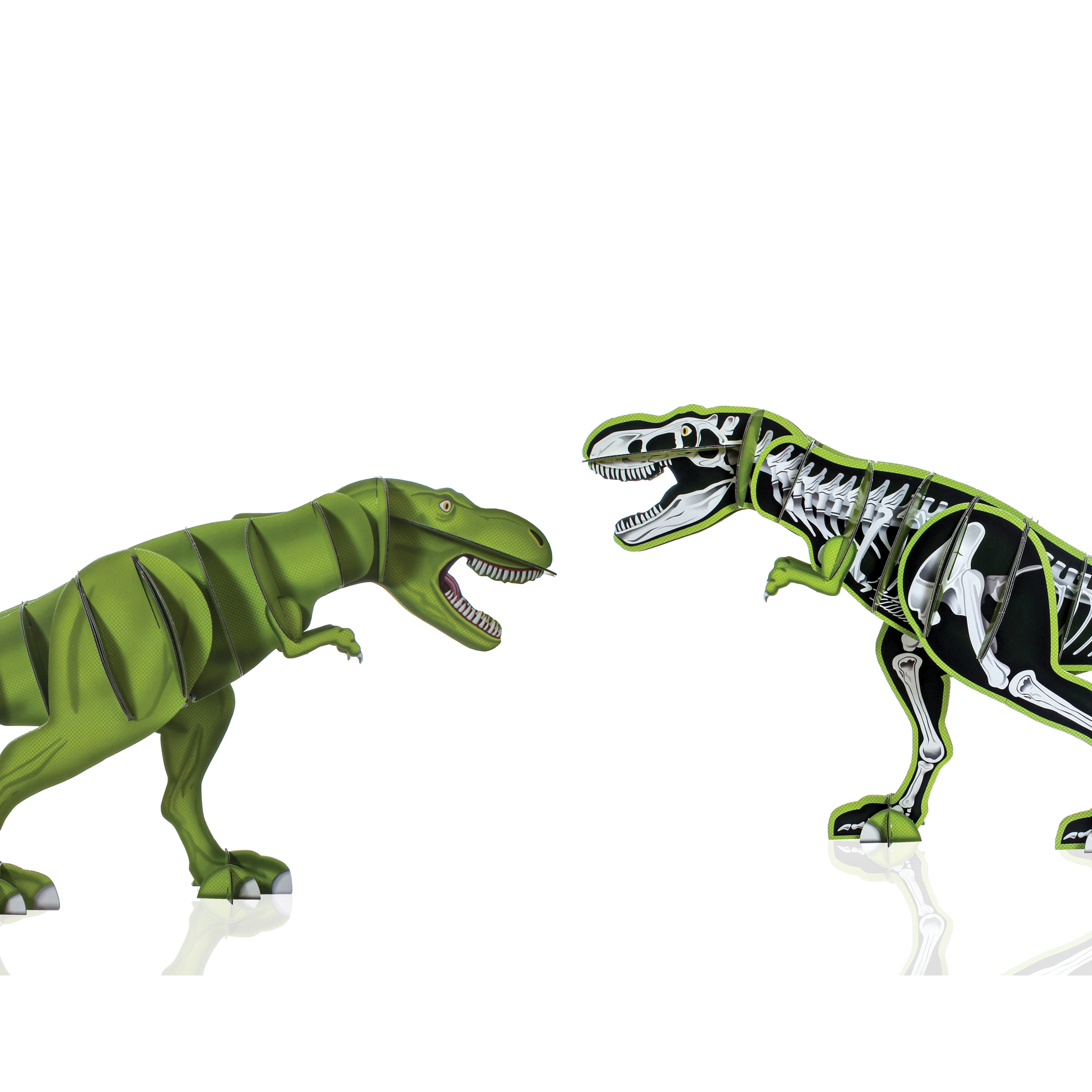 giant-dinosaur-model-kit-09.jpg
