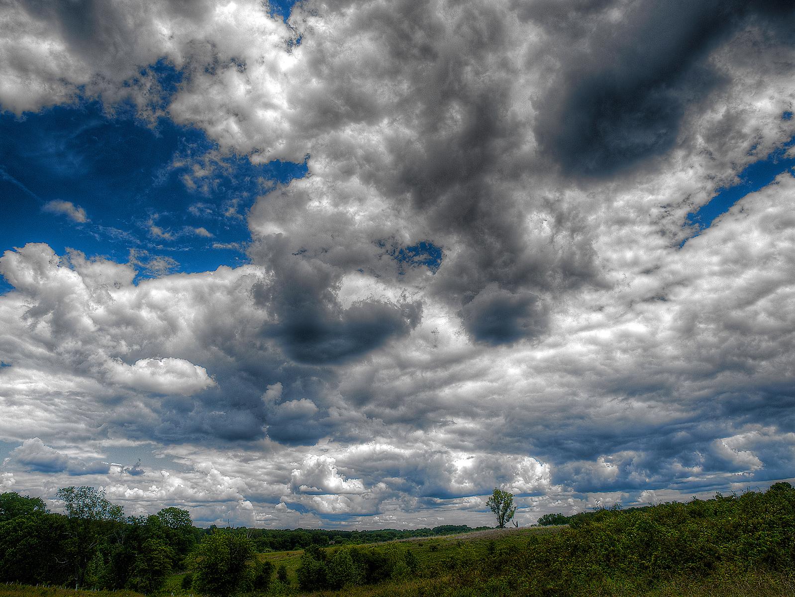 landscapes24.jpg