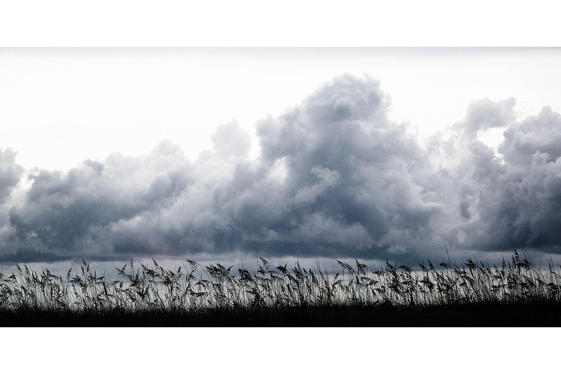 landscapes36.jpg