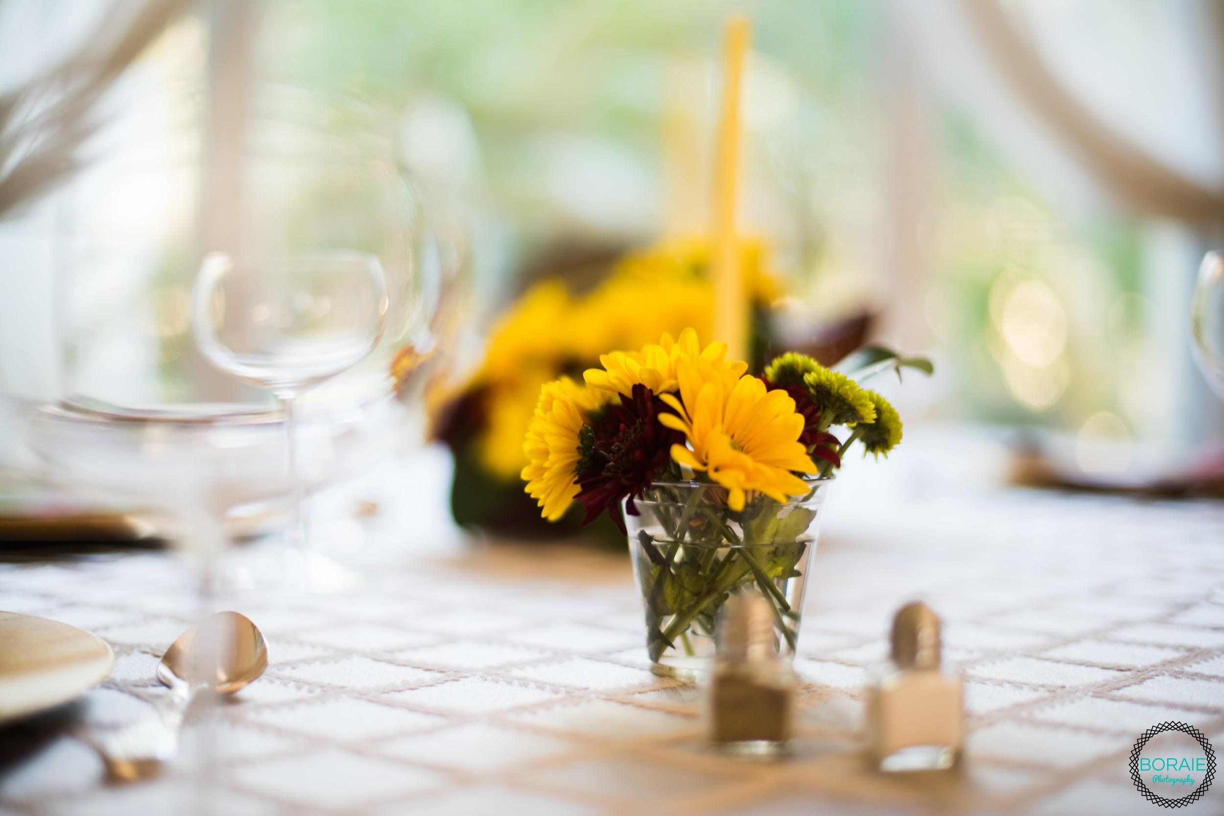 Thanksgiving - (www.boraiephotography.com) -6.JPG