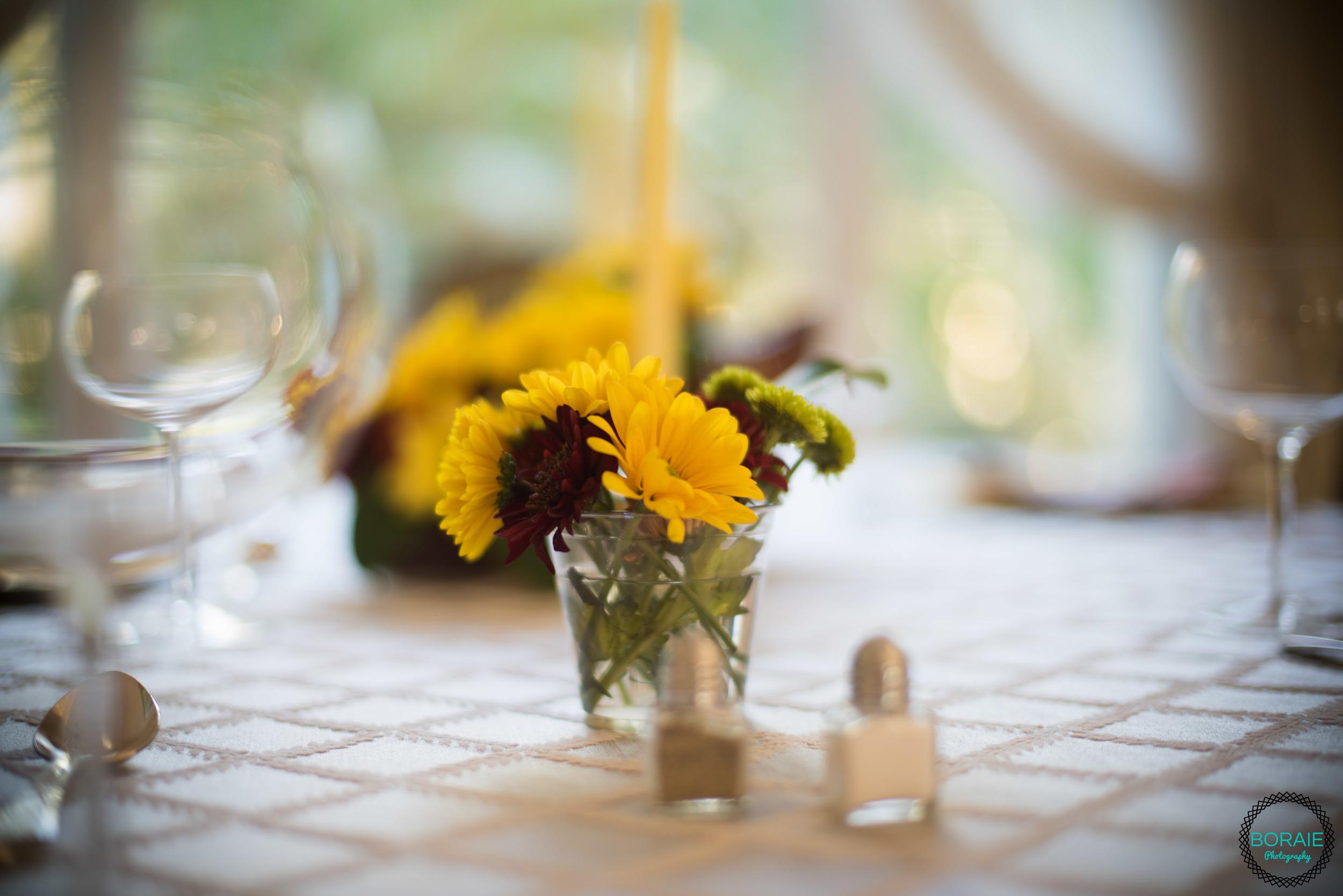Thanksgiving - (www.boraiephotography.com) -7.JPG