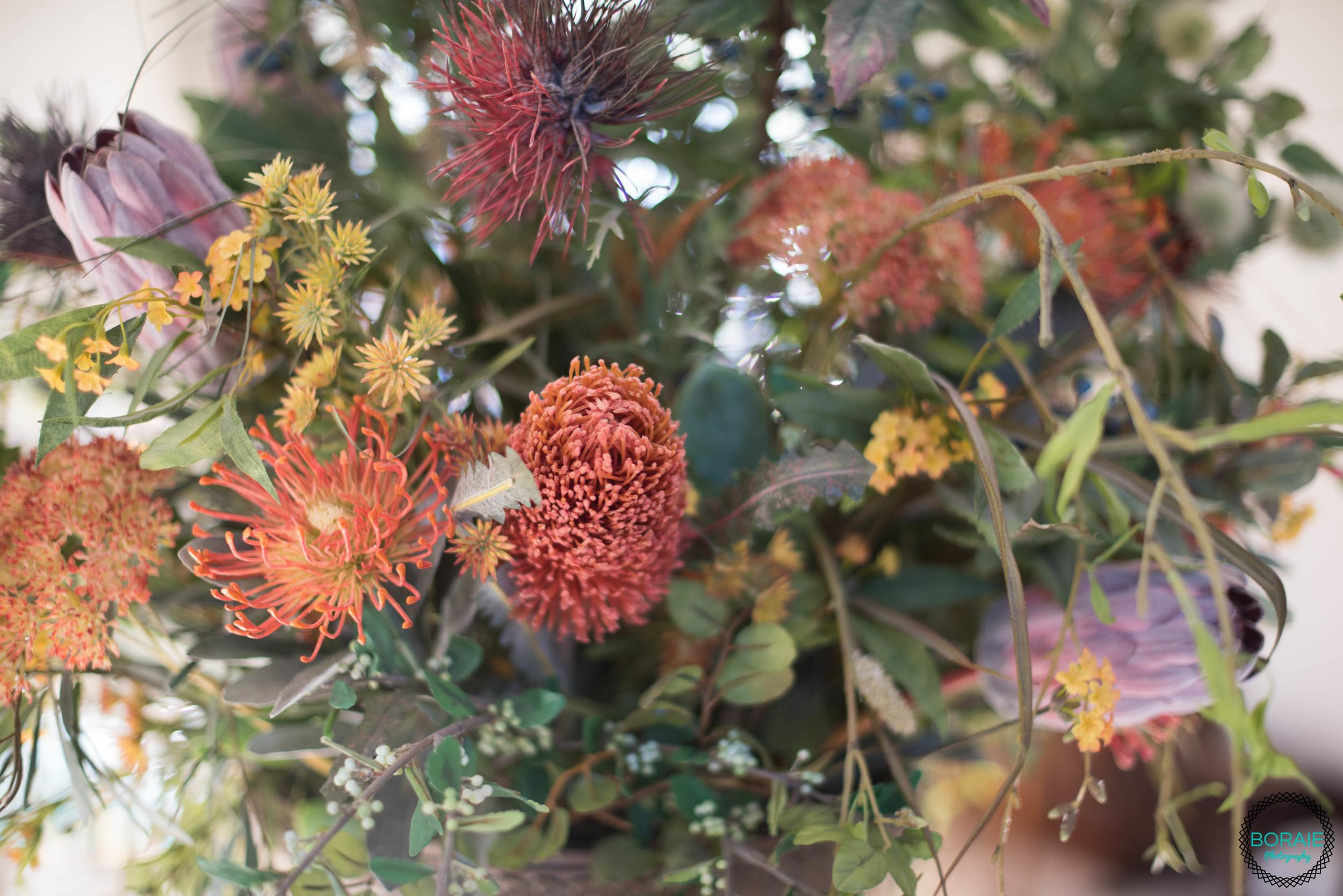 Thanksgiving - (www.boraiephotography.com) -32.JPG