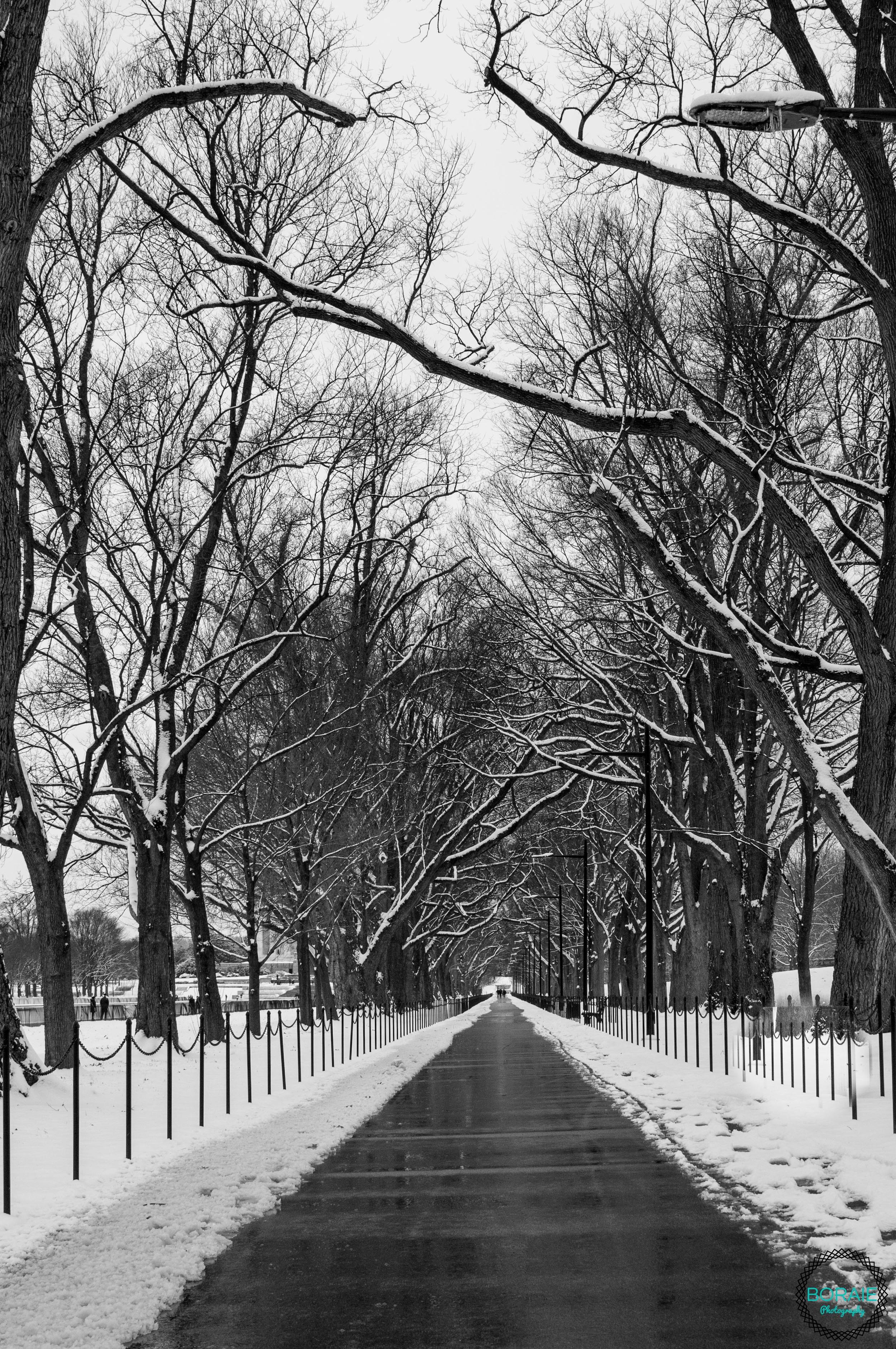 DC VA MD Photographer  (www.boraiephotography.com)-9.JPG