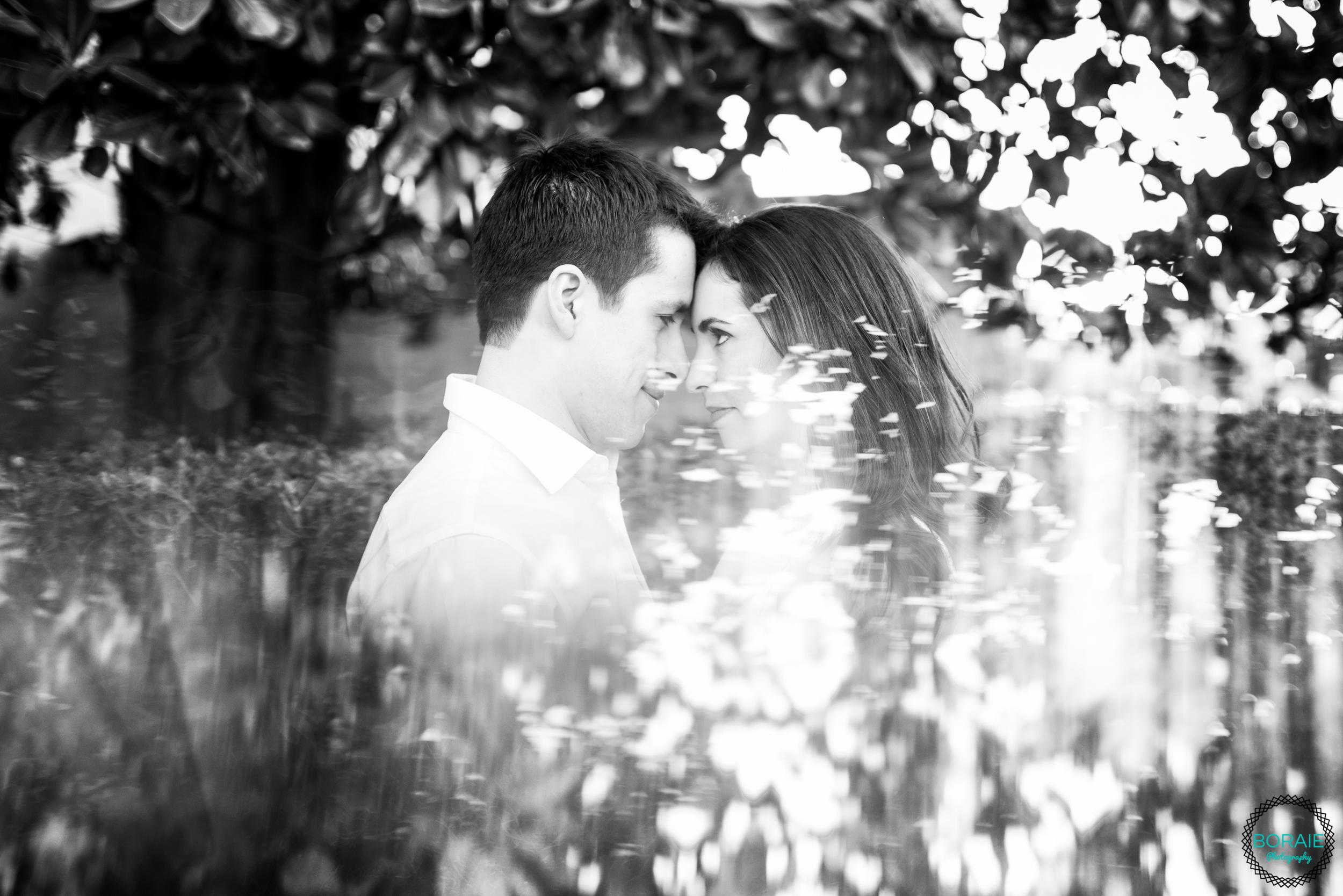 Boraie Photography -(www.boraiephotography.com )-42.JPG