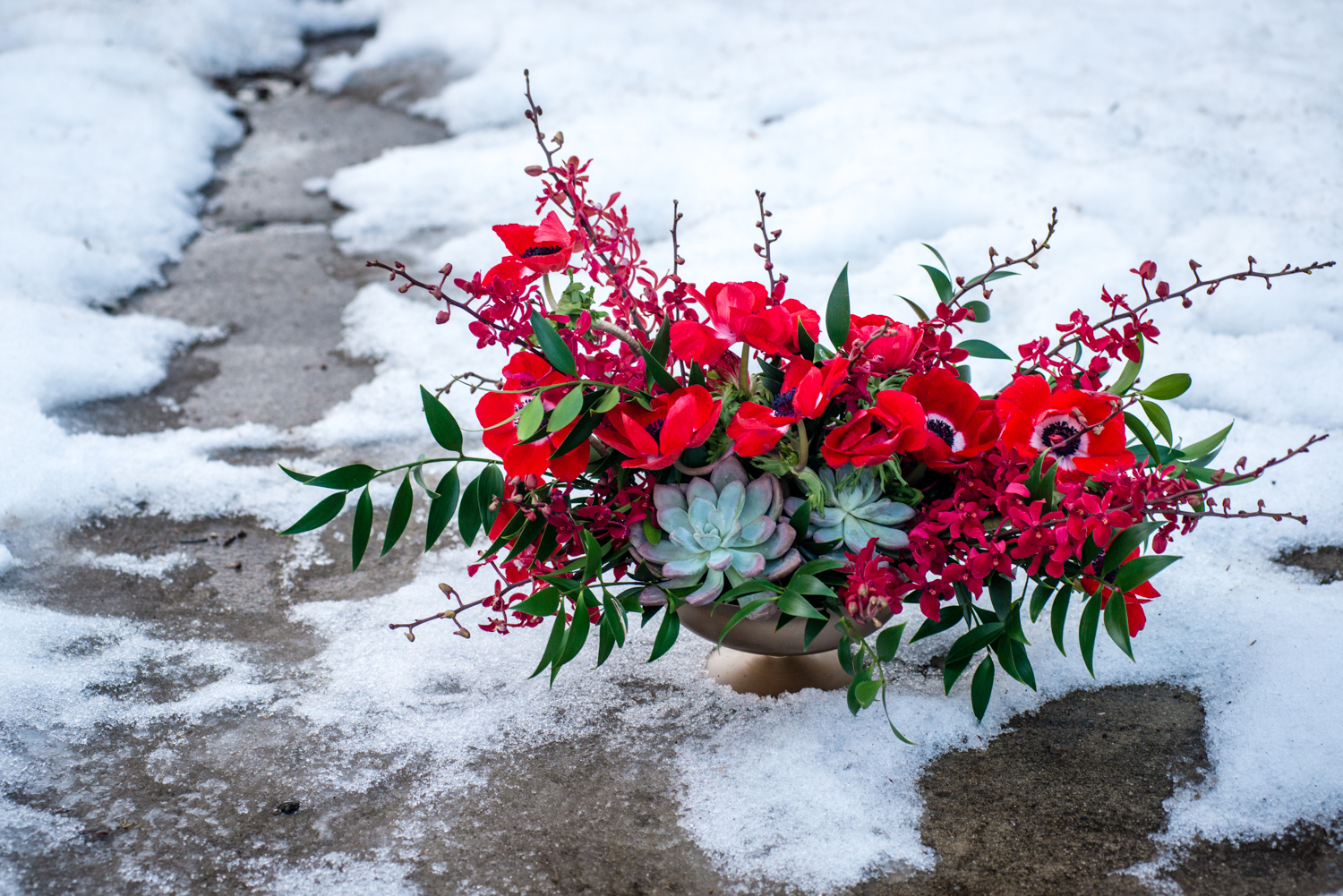 Campbell Studios Red Centerpiece AMC Photography